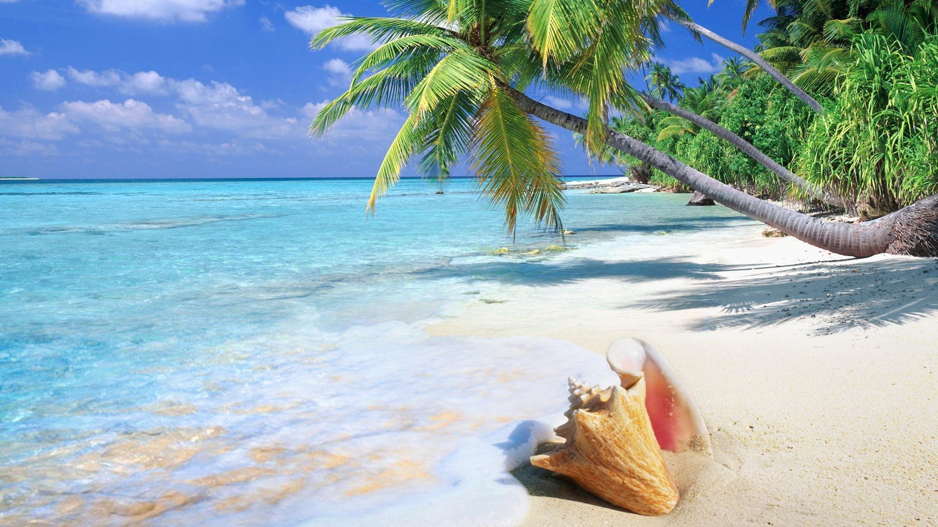 Res: 1920x1080,  9. beach-scenes-wallpaper-HD8-600x338