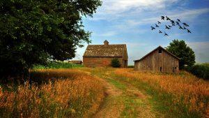 Farm Scene wallpapers