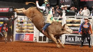 Bull Riding wallpapers