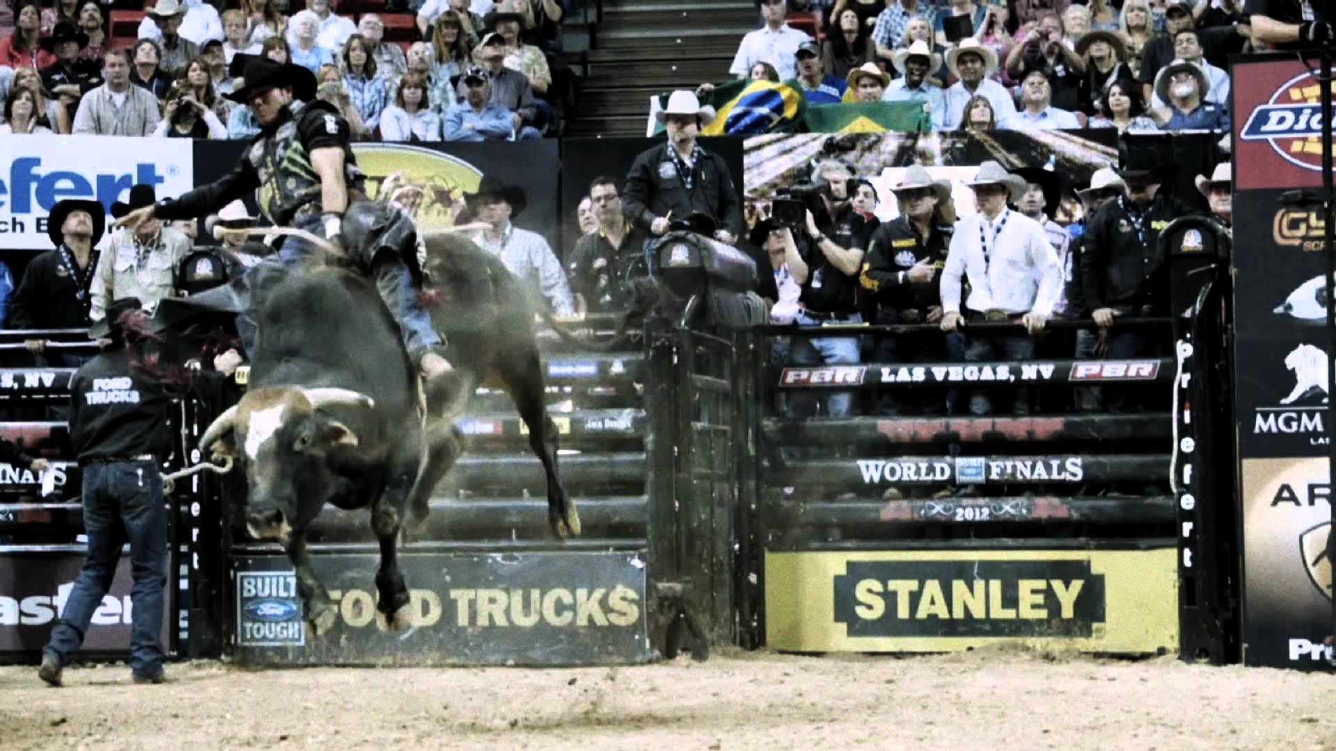 Res: 1920x1080, Images For > Pbr Bull Riding 2014