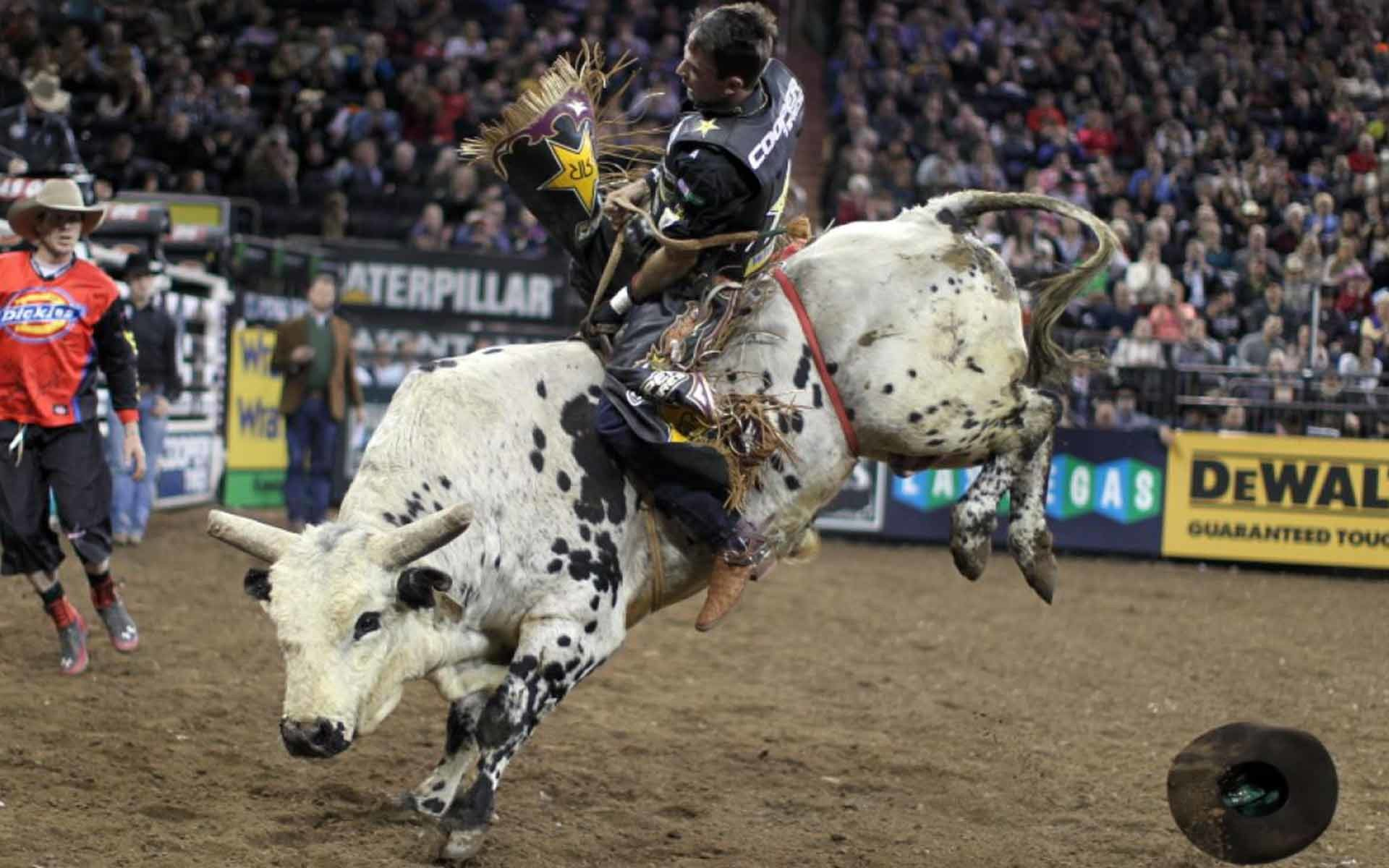 Res: 1920x1200, professional bull riders msg