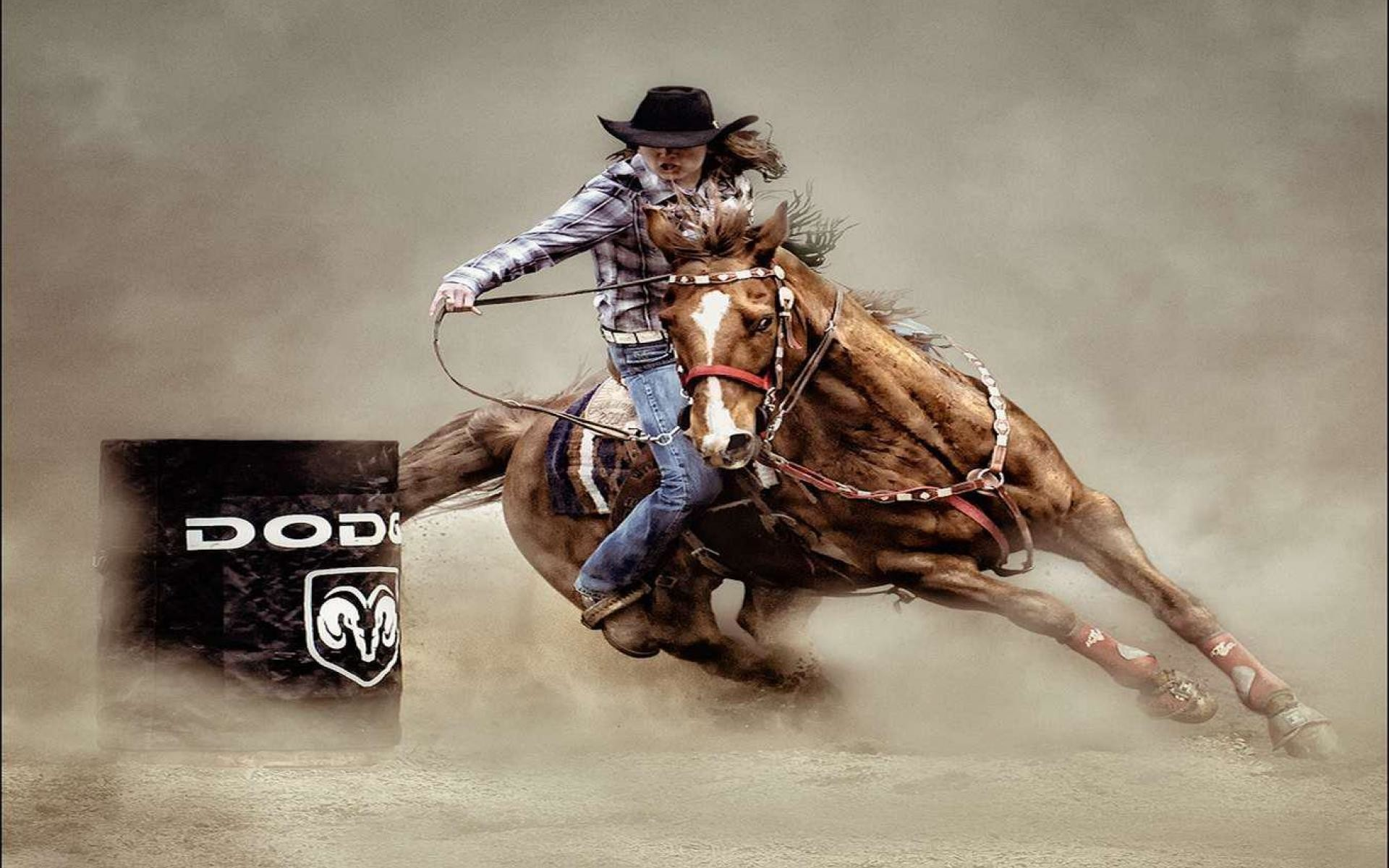 Res: 1920x1200, Rodeo Wallpapers