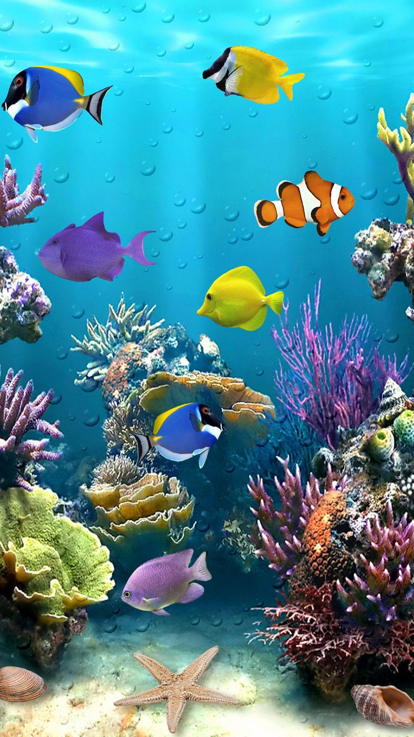 Res: 1440x2560, Beautiful Fish Tropical