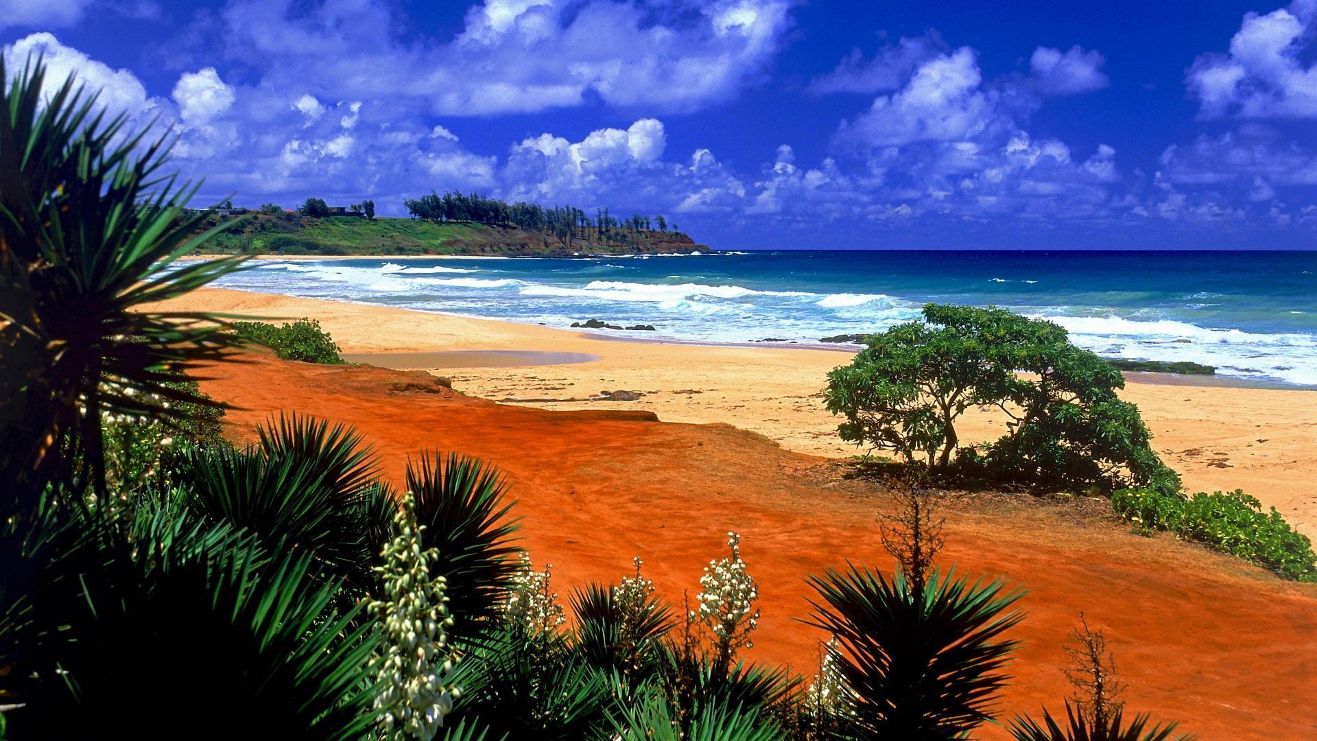 Res: 1920x1080, Beach Shade Hawaii