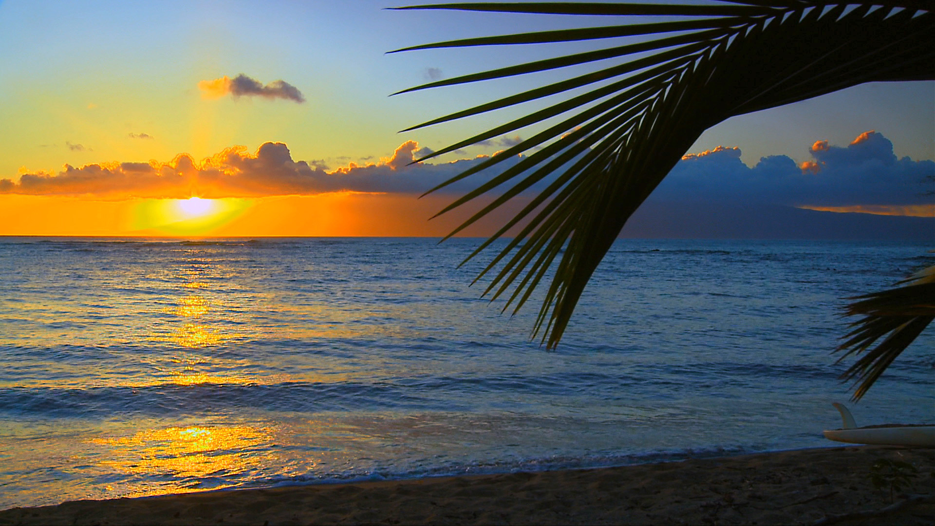 Res: 1920x1080, SEE The Most Beautiful Hawaii Beaches HD Blu Ray Video DVD The 1