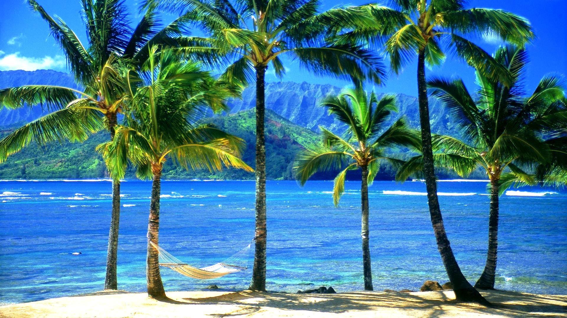 Res: 1920x1080, ... HDQ-Hawaiian Beach 2016 High Resolution ...
