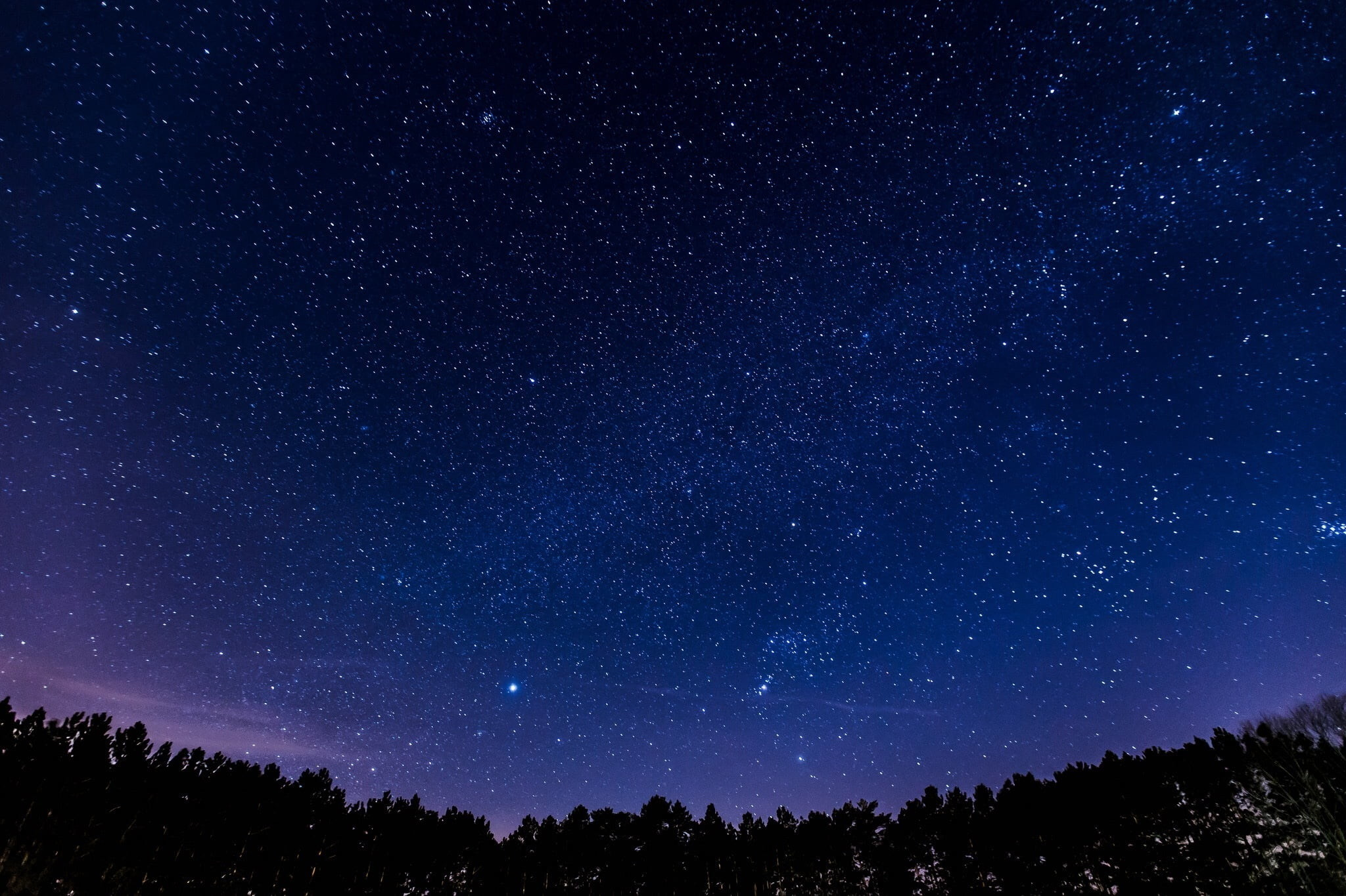 Res: 2048x1365, silhouette of trees under purple sky with stars HD wallpaper