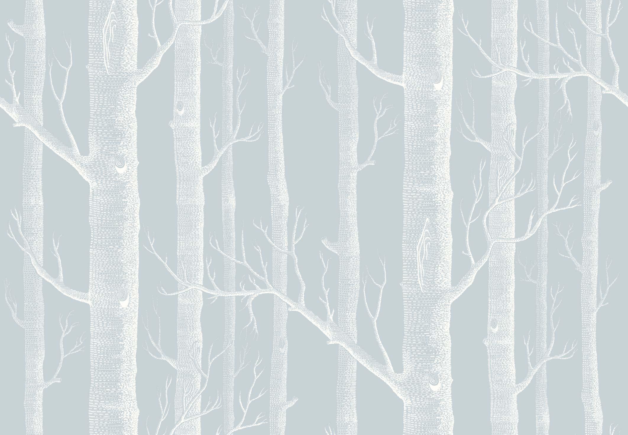 Res: 2124x1471, Unique Birch Bark Wallpaper