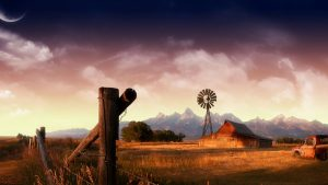 Country Boy wallpapers