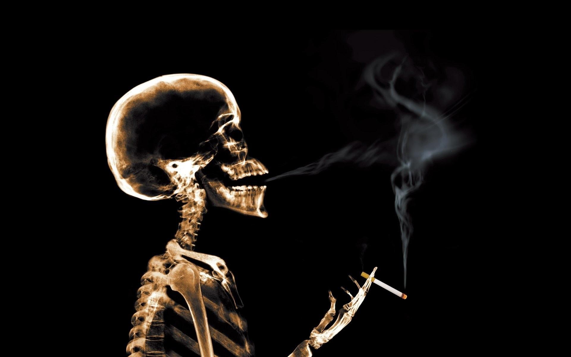 Res: 1920x1200, Smoking Skull Live Wallpaper