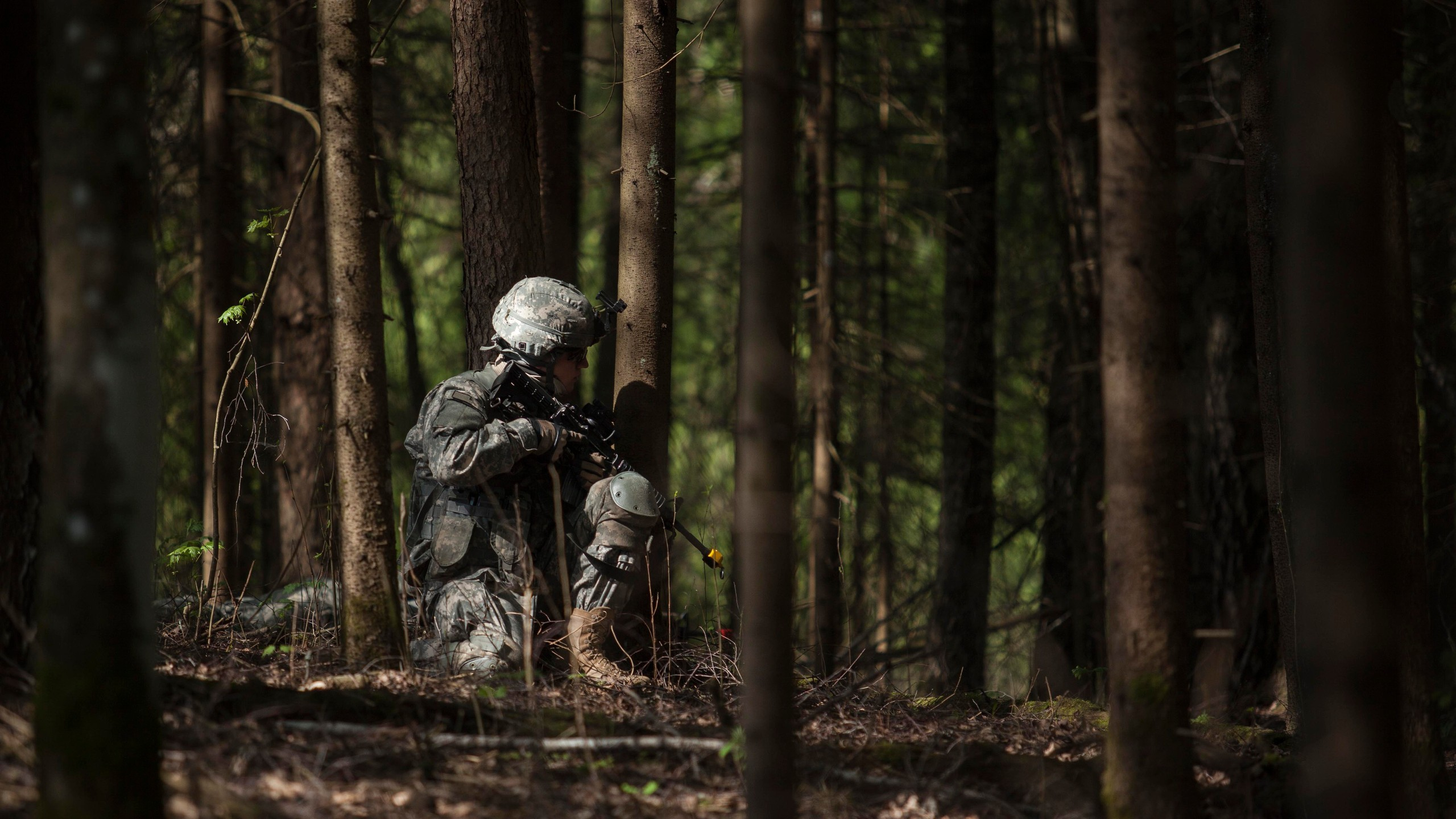 Res: 2560x1440, military, Soldier, Blank firing Adapter, United States Army, Forest  Wallpapers HD / Desktop and Mobile Backgrounds