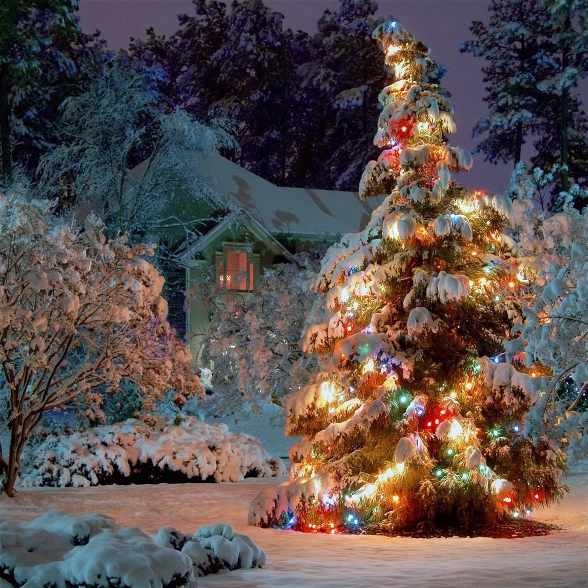 Res: 2048x2048, frozen christmas wallpaper #520584