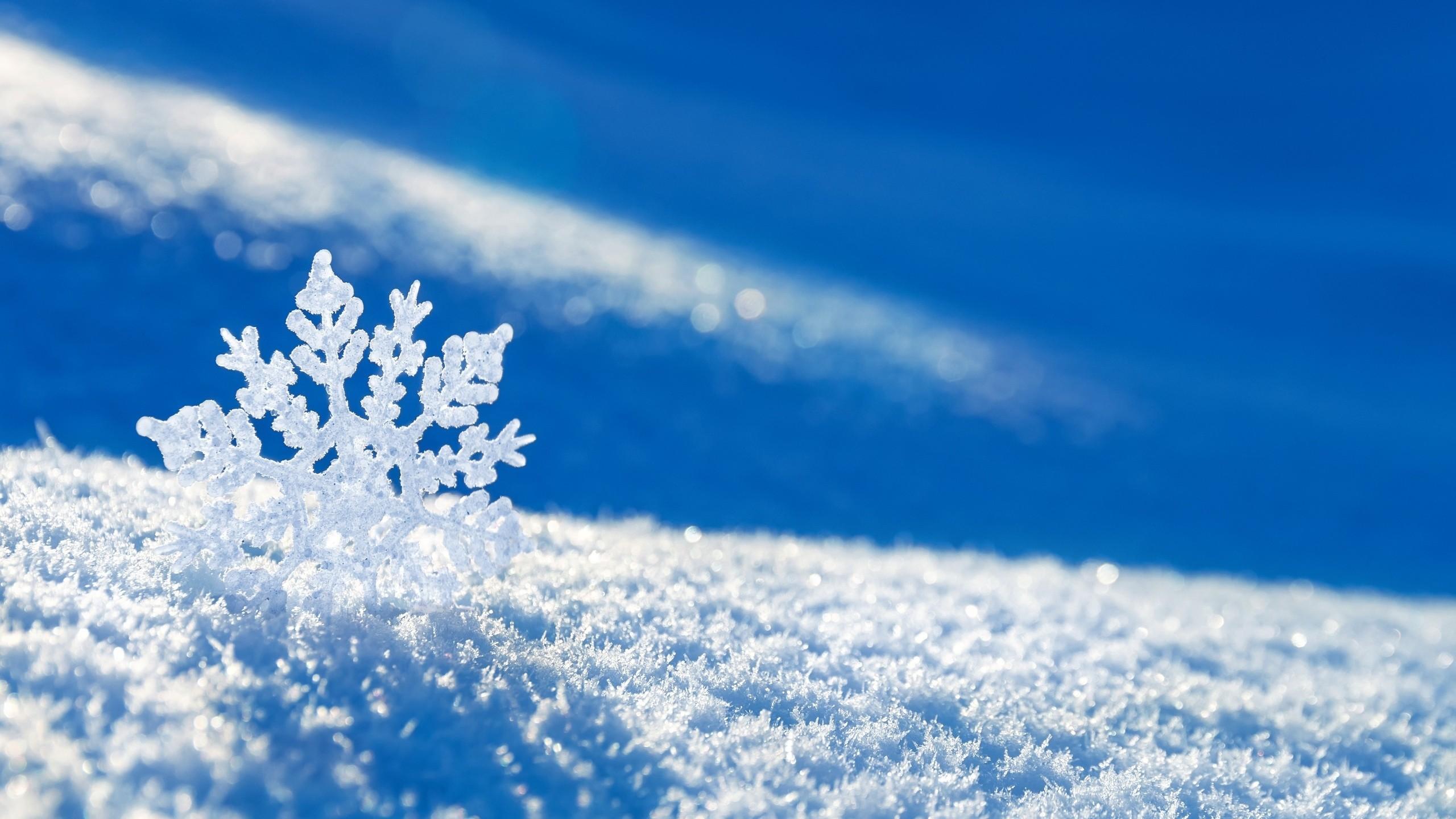 Res: 2560x1440, Snowflake Desktop Wallpapers Wallpaper