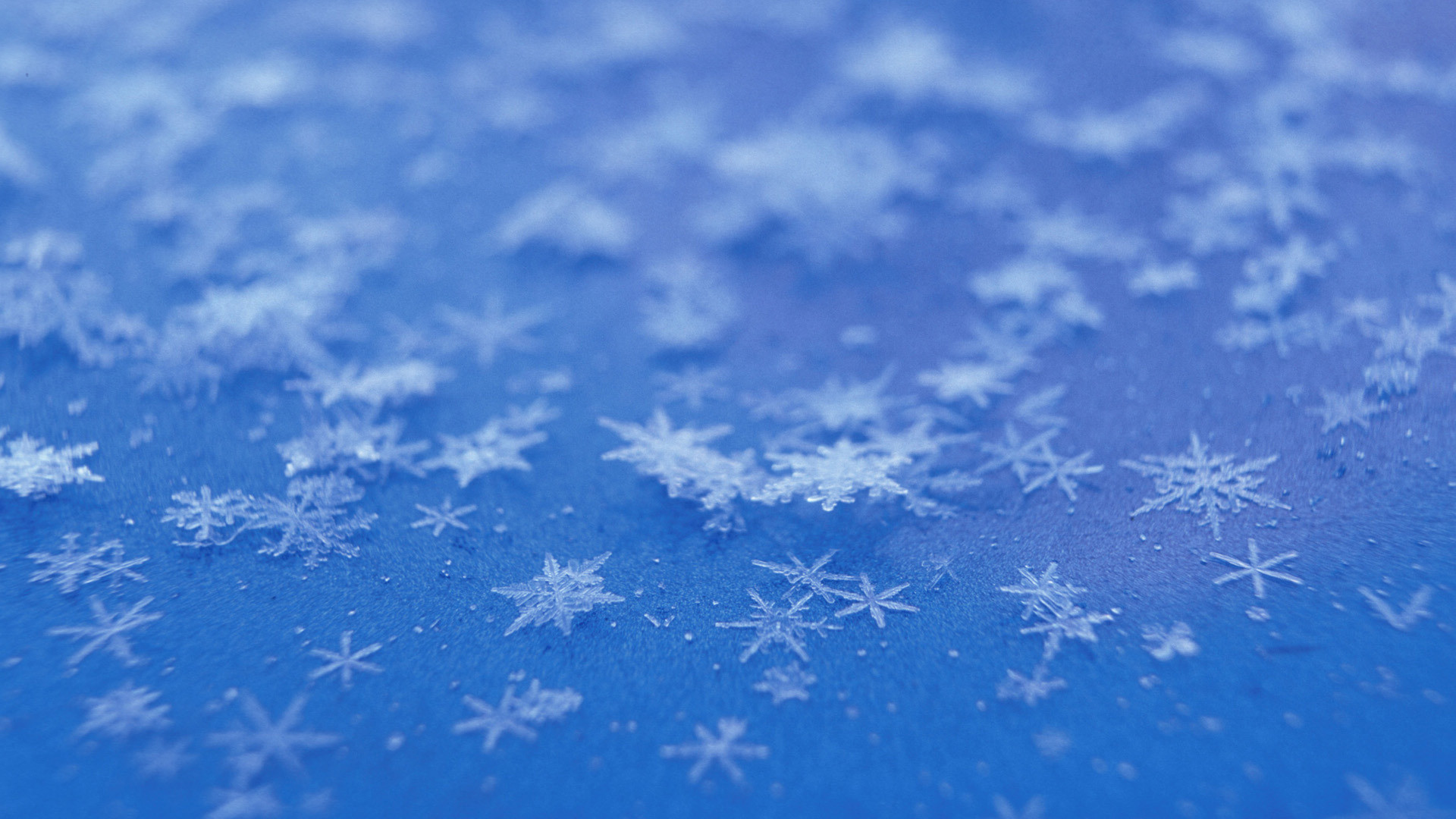 Res: 1920x1080, Image: Snowflakes wallpapers and stock photos. Â«