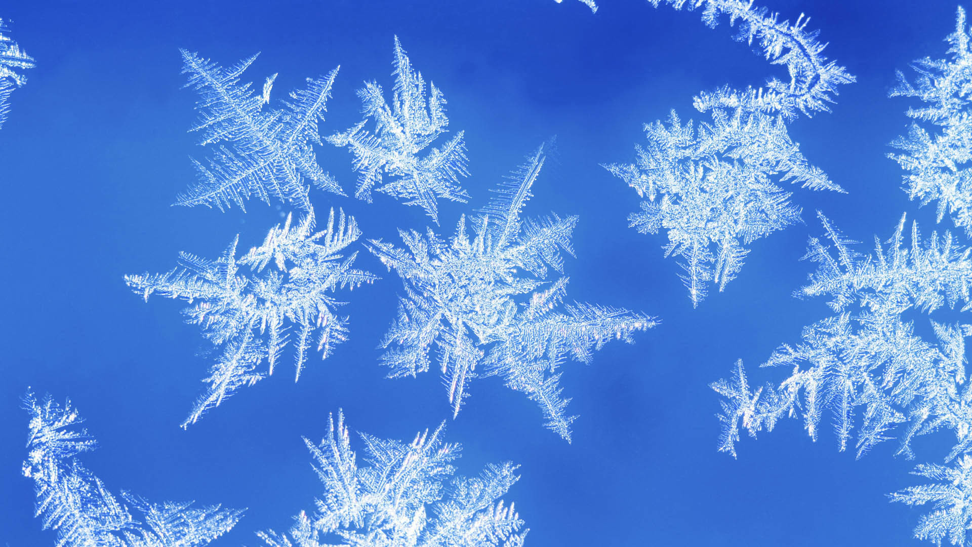 Res: 1920x1080, Image: Snowflake Photo wallpapers and stock photos. Â«