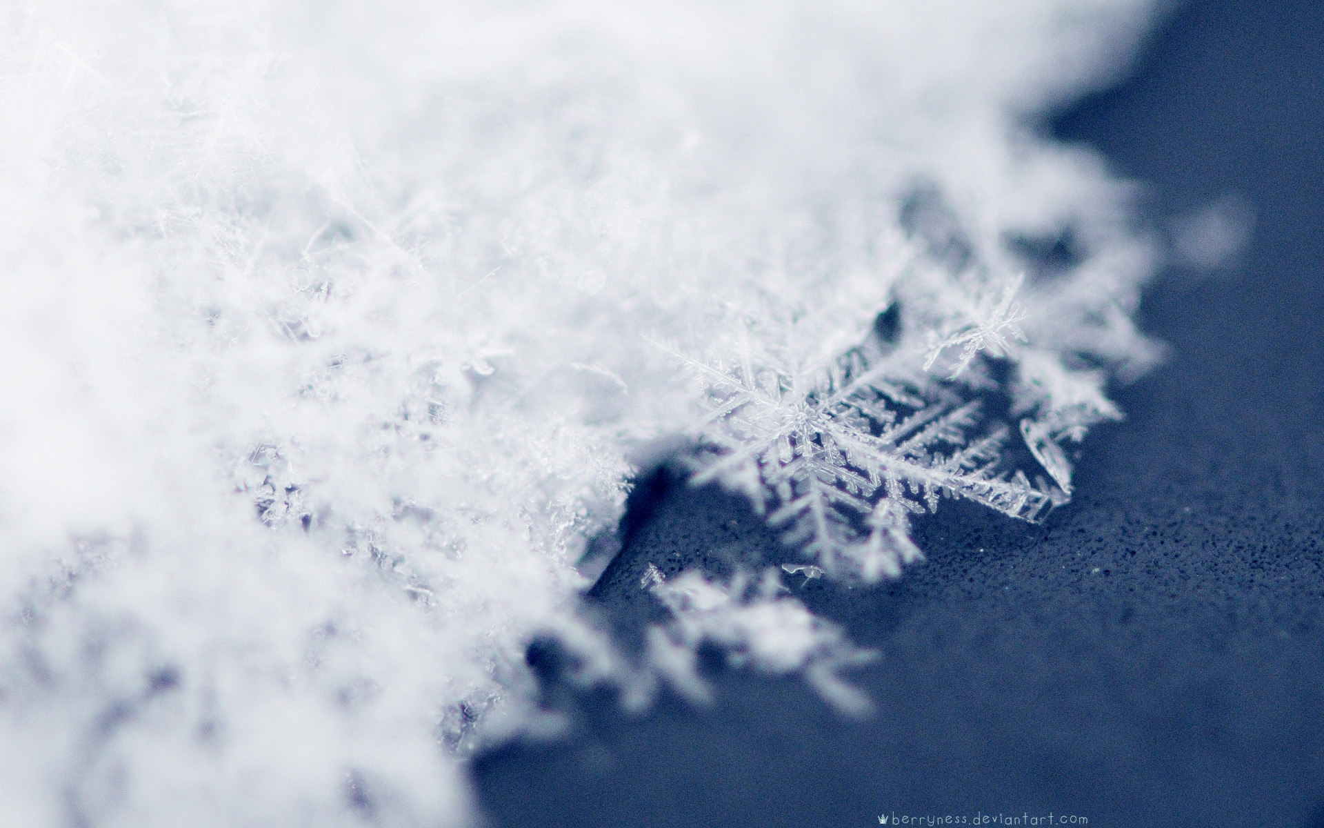 Res: 1920x1200, Image for Macro Photography Snowflakes Wallpaper Widescreen HD