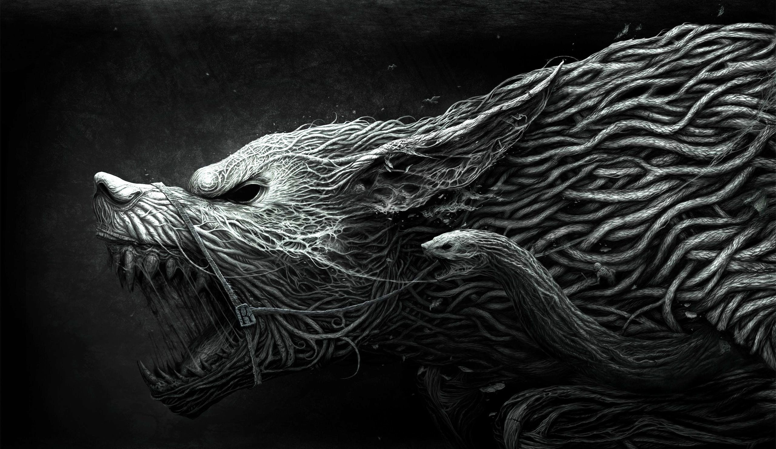 Res: 2560x1480, Wolf And Snake Wallpaper