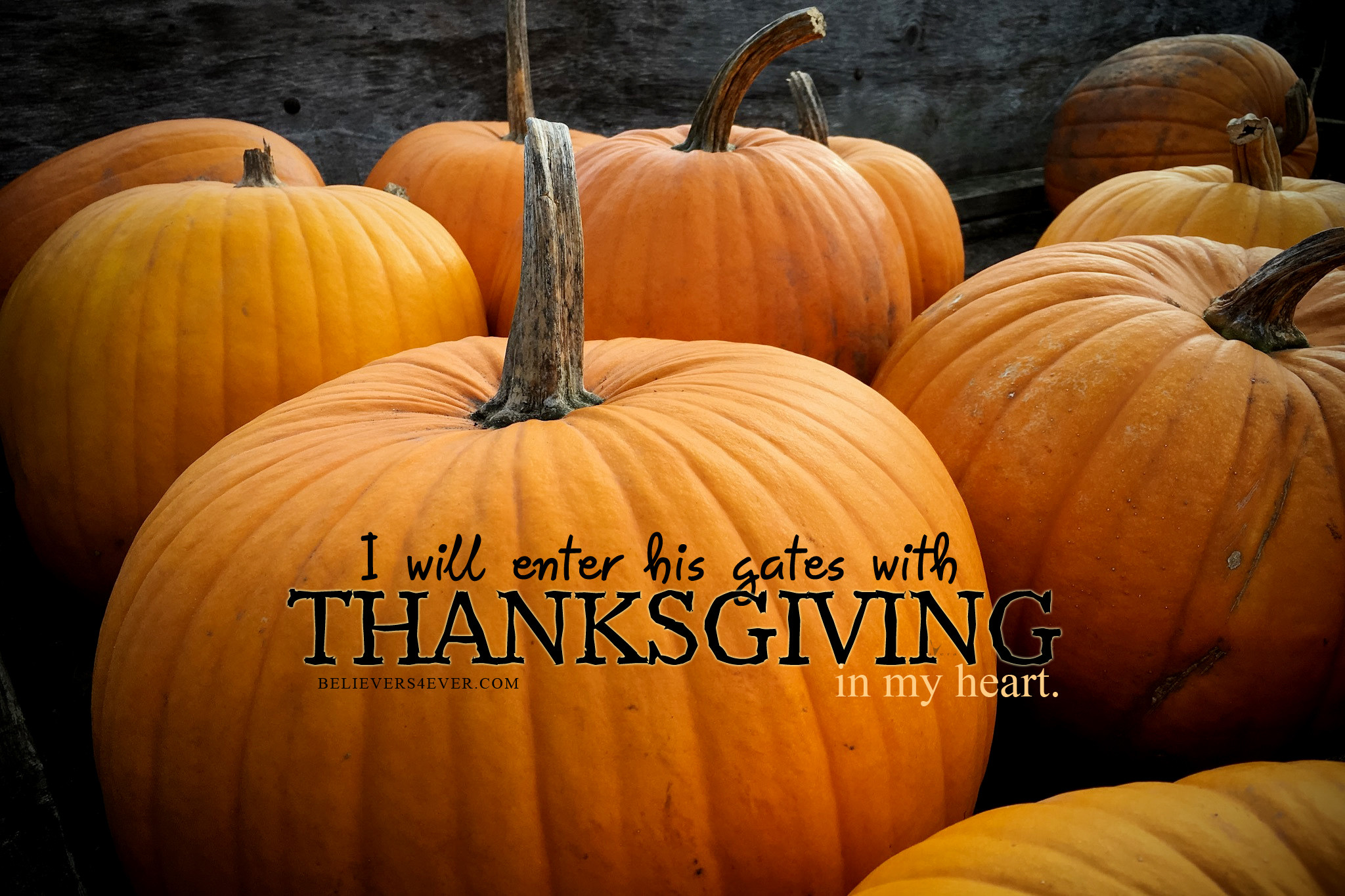 Res: 2048x1365, I will enter his gates with thanksgiving christian wallpaper
