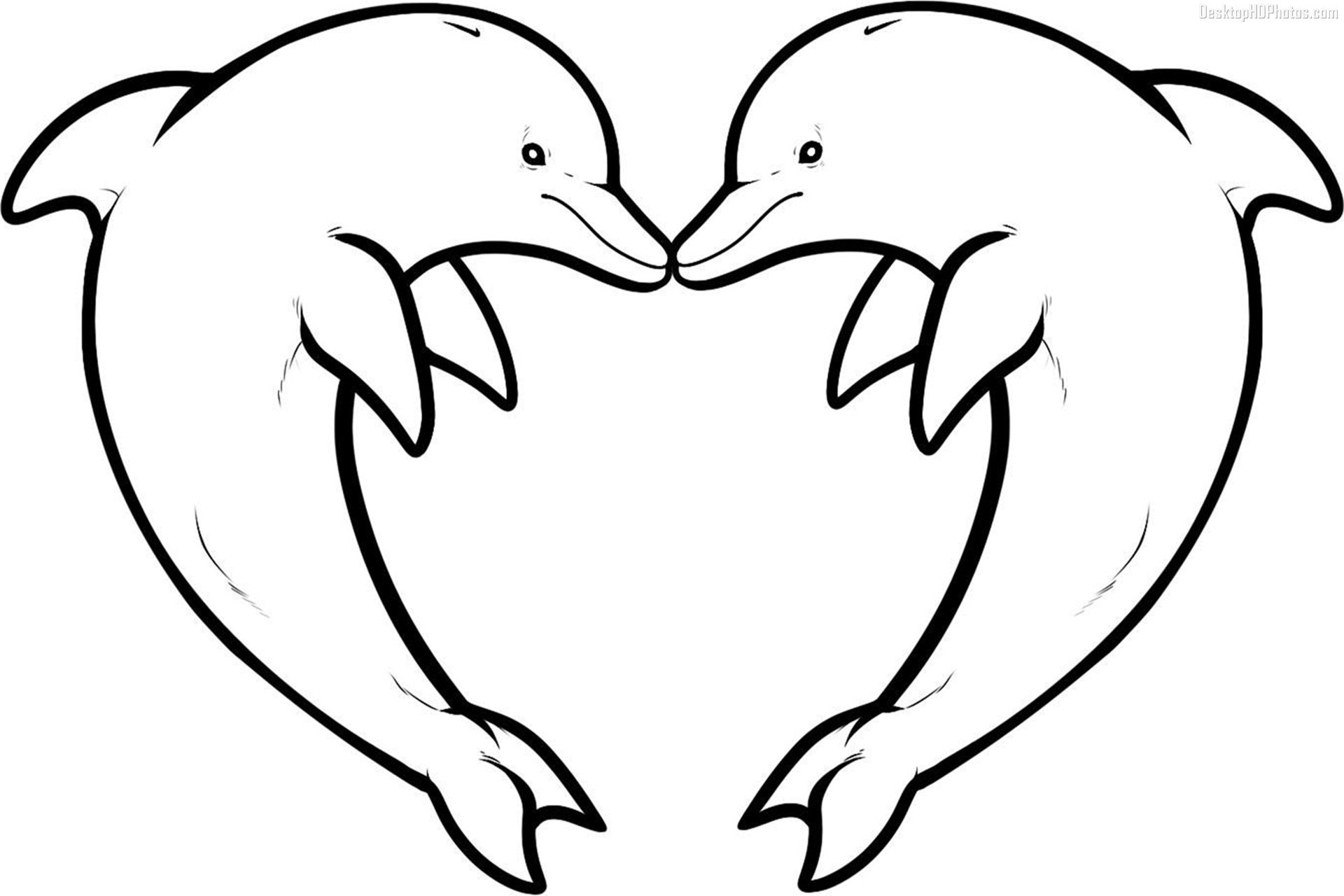 Res: 1920x1280, Great Island Of The Blue Dolphins Coloring Pages With Wallpapers Images  Mayapurjacouture Com