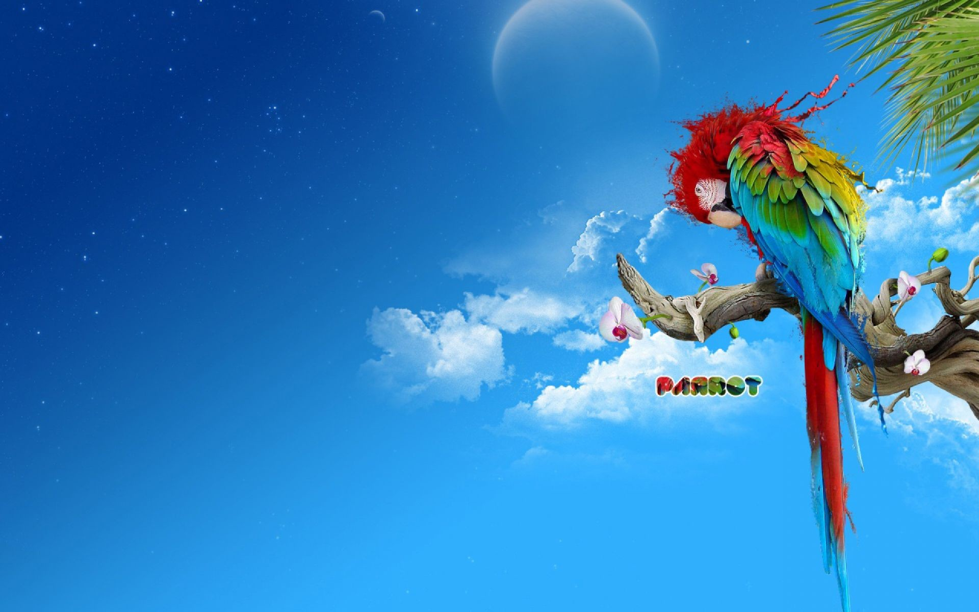 Res: 1920x1200, 3D Parrot With Rainbow Color Splash Wallpaper | HD Animals and Birds  Wallpaper Free Download ...