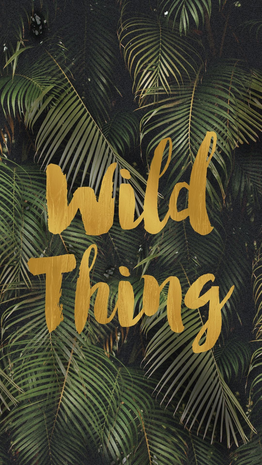 Res: 1080x1920, wild thing