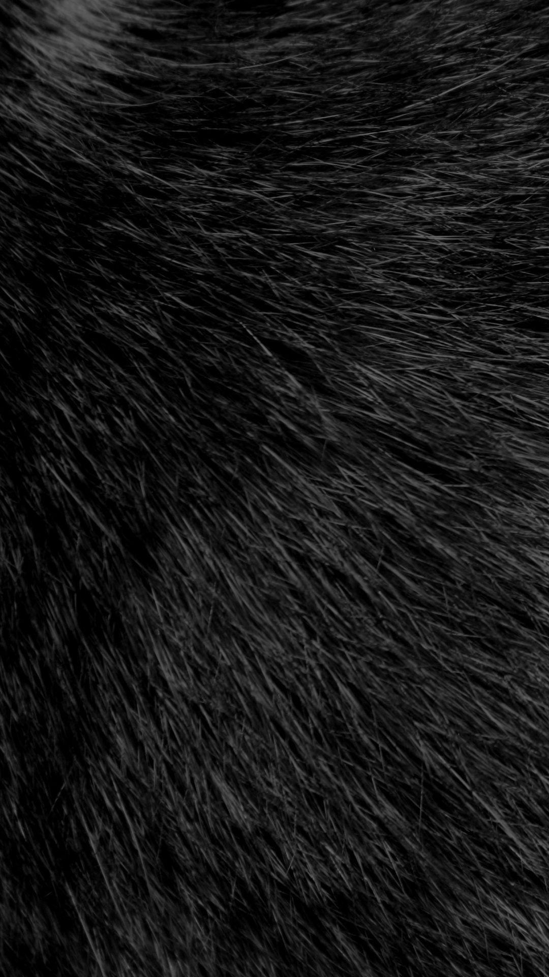 Res: 1080x1920, Download Black Fluffy Fur 1080 x 1920 Wallpapers - 4733560 - fluffy fur  black | mobile9