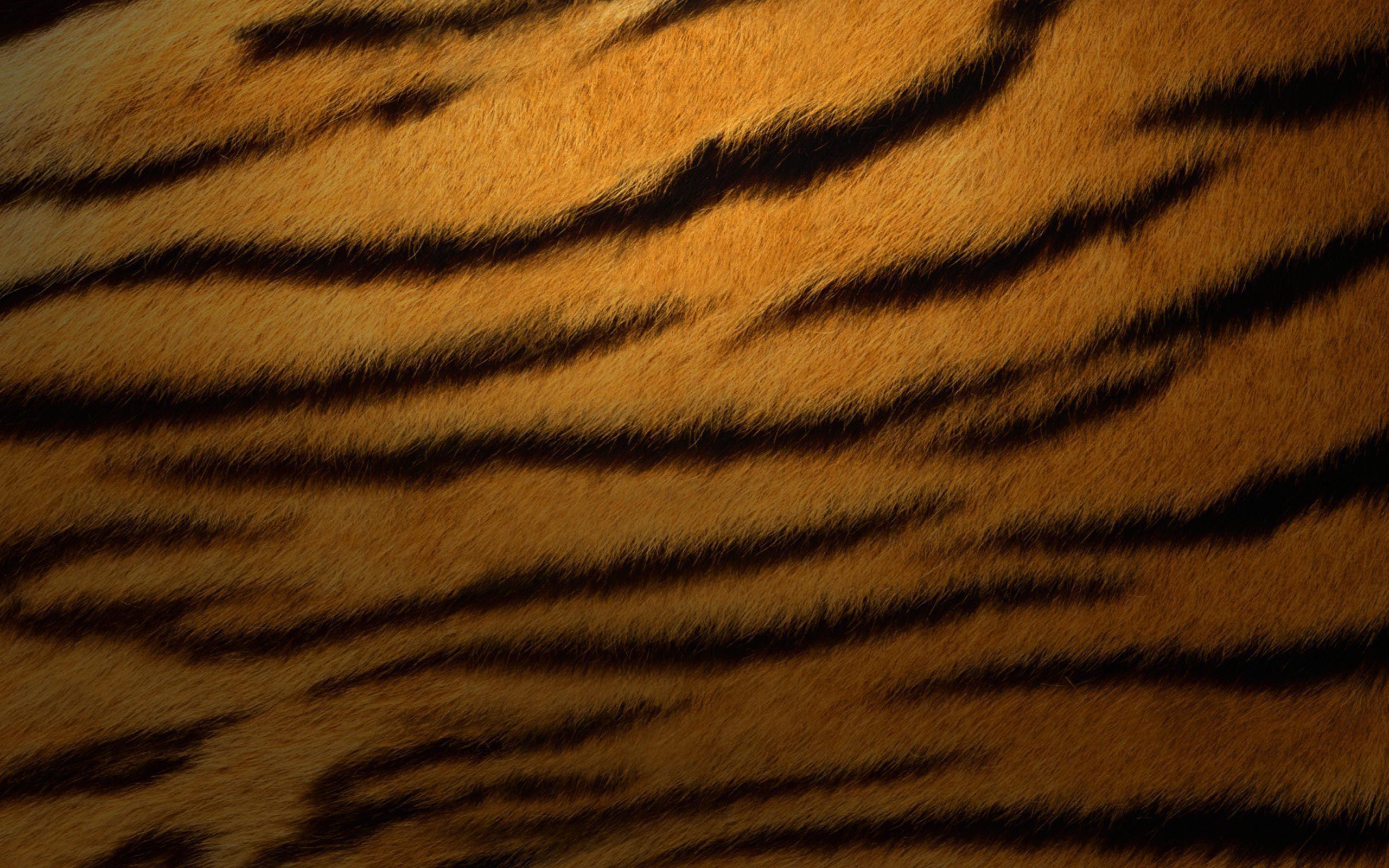Res: 2560x1600, Tiger fur wallpaper thumb