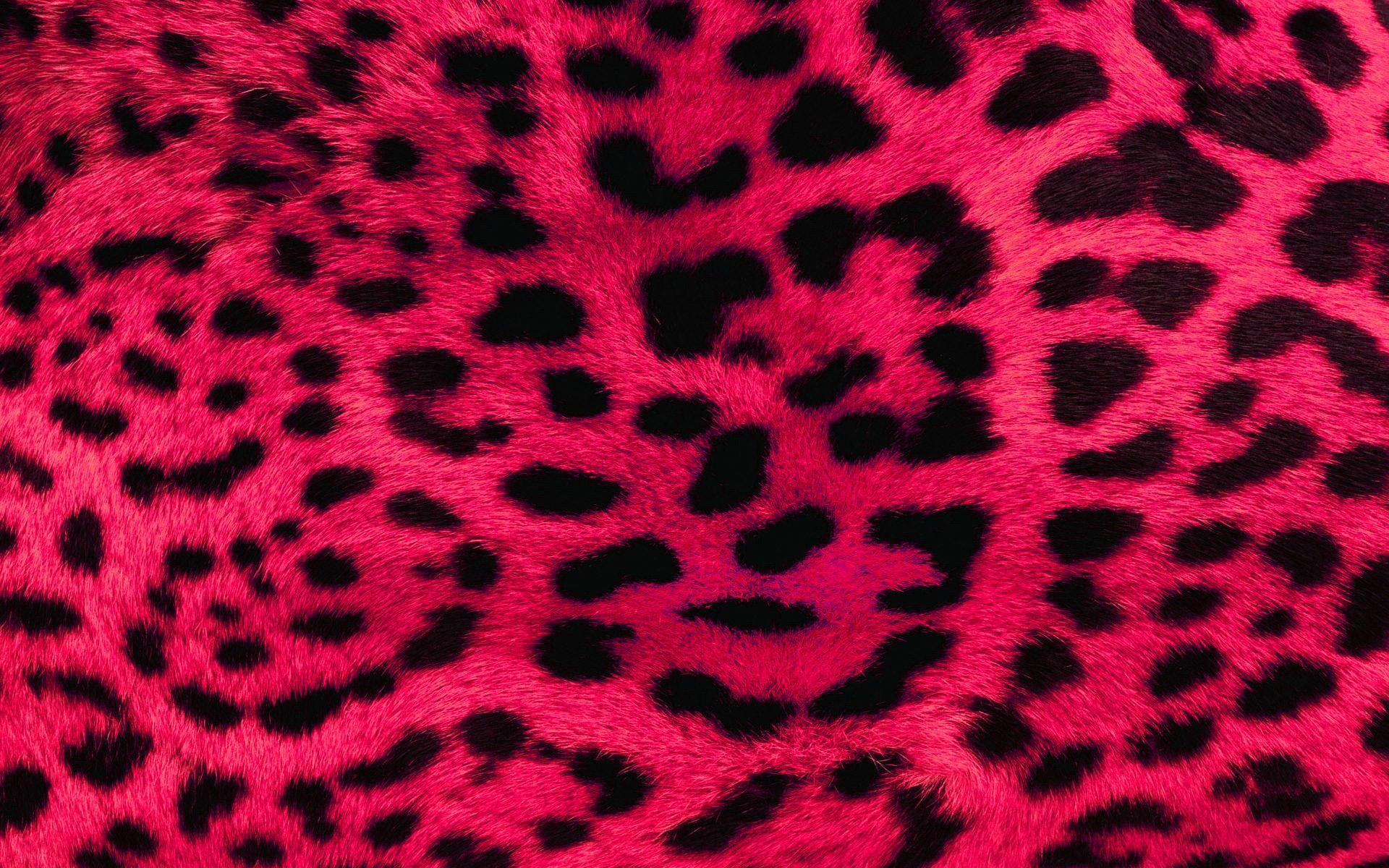 Res: 1920x1200, ... Pink Wallpaper 15 ...