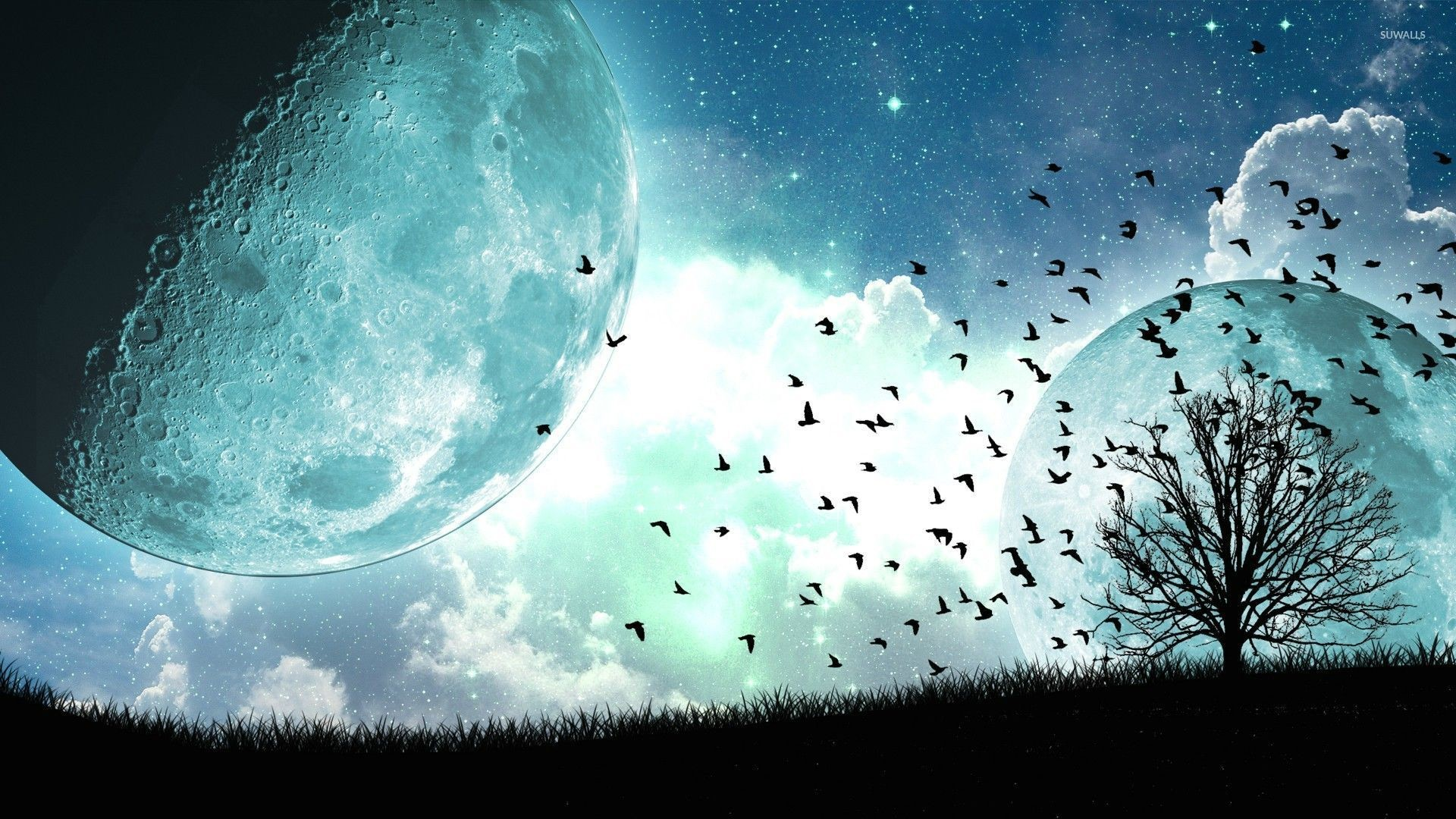 Res: 1920x1080, Birds and tree under the blue moon wallpaper