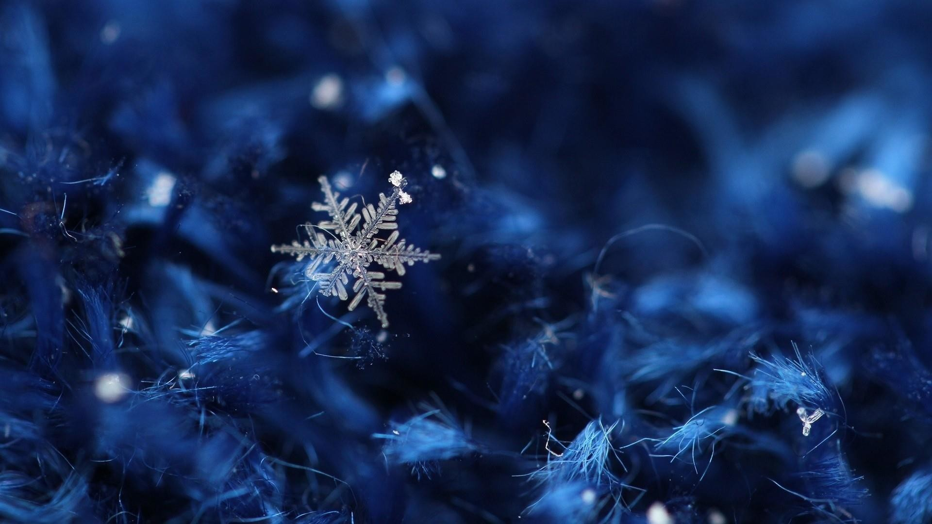 Res: 1920x1080, Christmas Ice Crystal Wallpaper   Wallpaper Studio 10   Tens of thousands  HD and UltraHD wallpapers for Android, Windows and Xbox