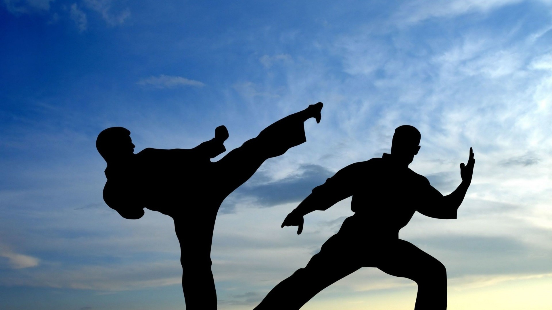 Res: 1920x1080, Karate Fight Shadow Free Hd Wallpapers | Free HD Wallpapers HQ