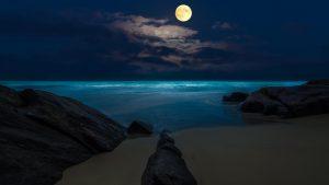 Beach Moon wallpapers