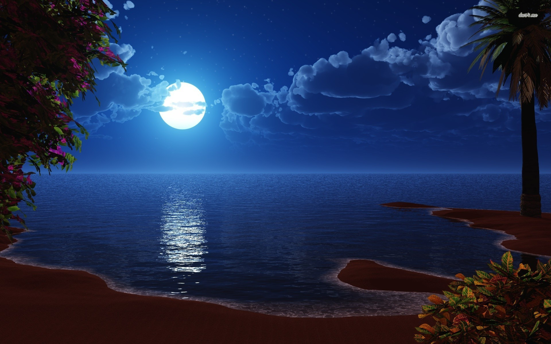 Res: 1920x1200, ... Full moon at the beach wallpaper  ...