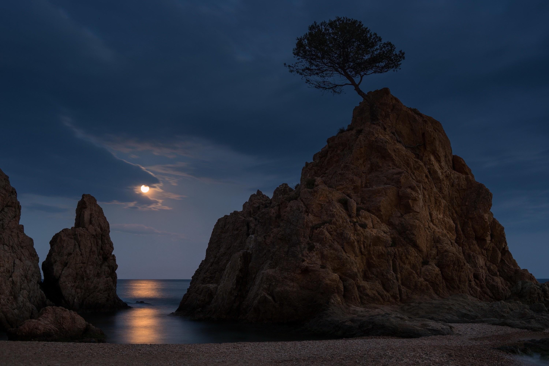 Res: 3000x2001, tossa, de, mar, costa, brava, spain, spain, night, moon, moonlight, rocks,  sea, beach, tree, landscape, nature Wallpaper HD