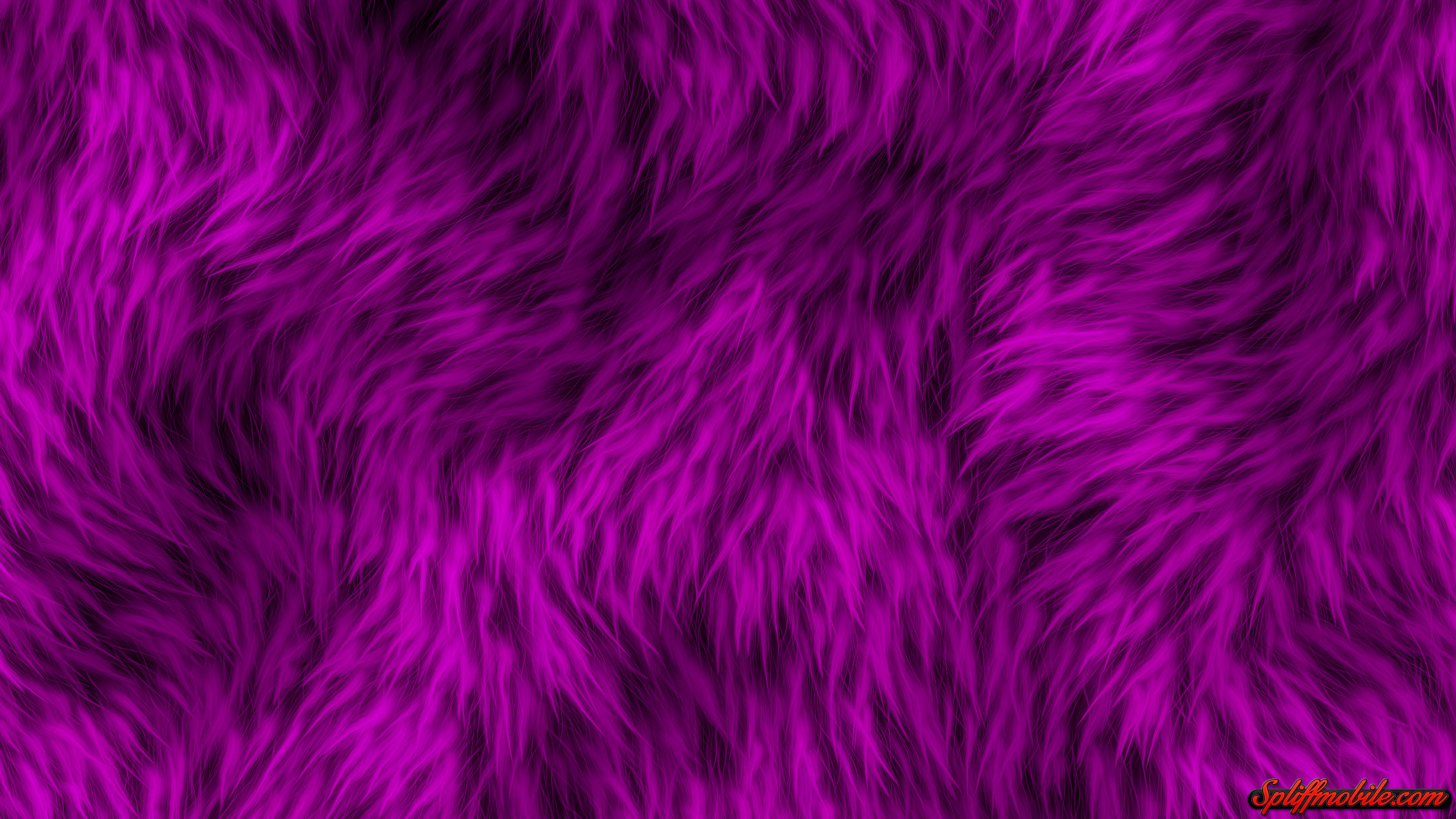 Res: 3840x2160, HD Furry Purple Wallpaper