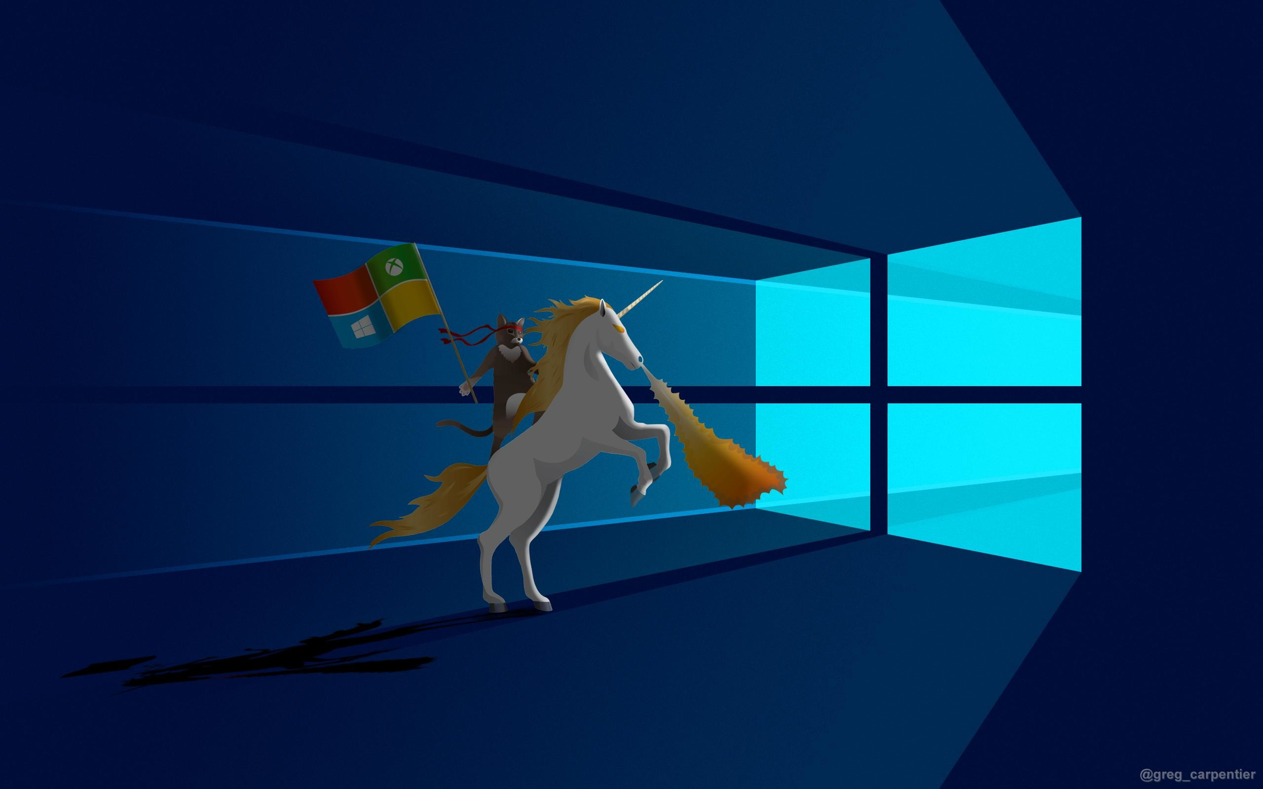 Res: 2560x1600, Windows 10 Ninja-Cat Unicorn