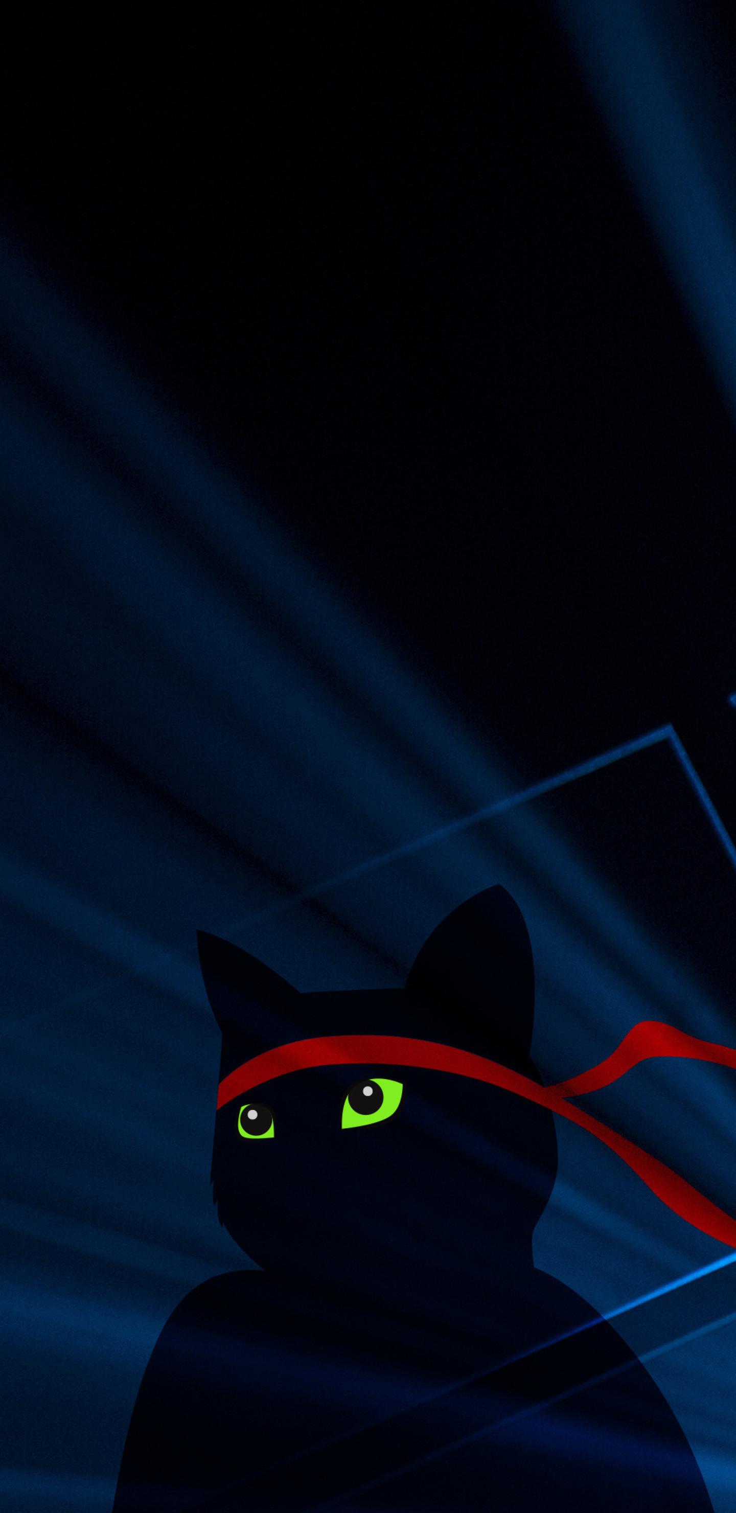 Res: 1440x2960, ninja-cat-4k-q1.jpg