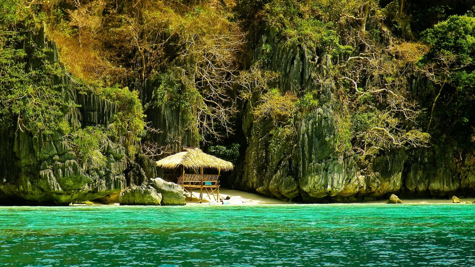 Res: 1920x1080, Philippines Tag - Trees Travel Paradise Island Beach Water Sea Cliffs  Summer Forest Palawan Beautiful Tropical