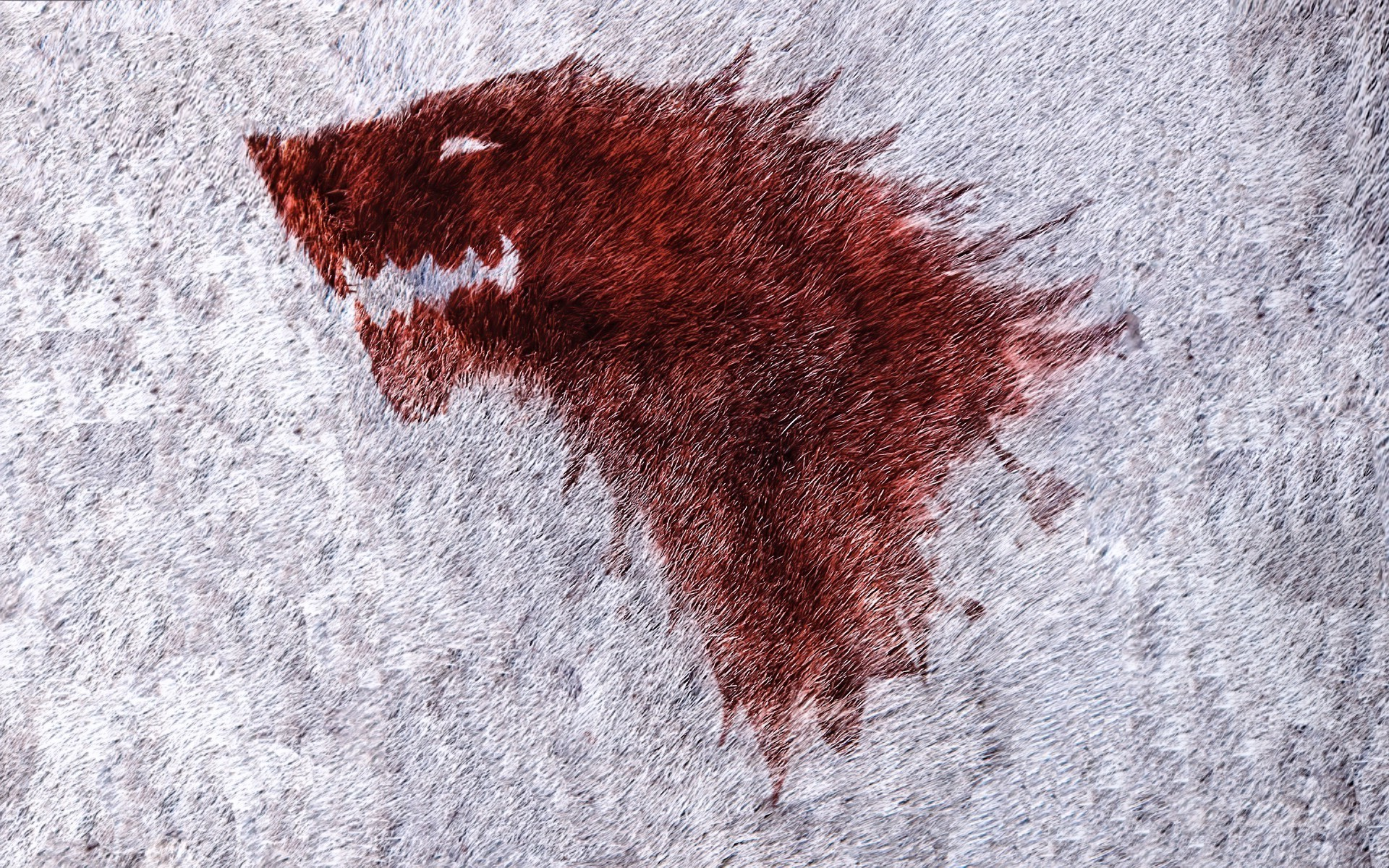 Res: 1920x1200, Game Of Thrones, House Stark Wallpapers HD / Desktop and Mobile Backgrounds