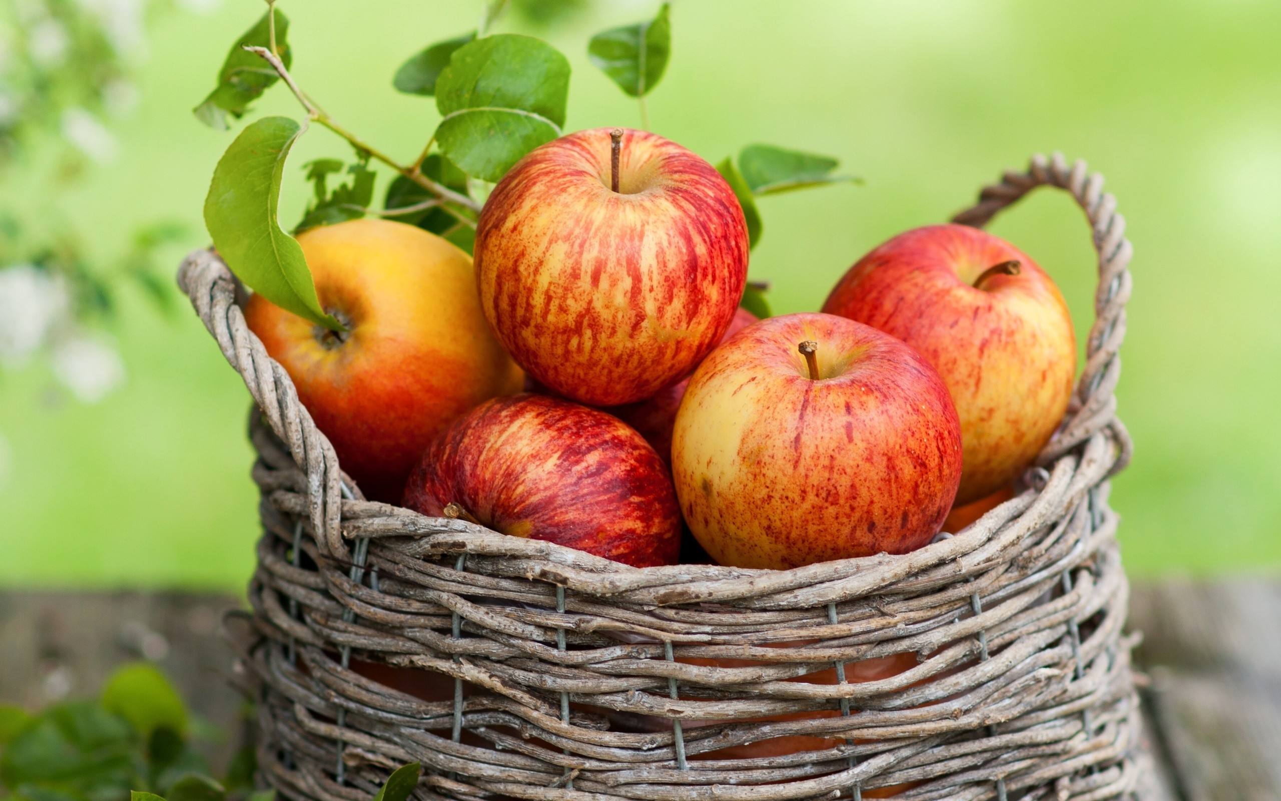 Res: 2560x1600, Apple Fruit Wallpapers 10