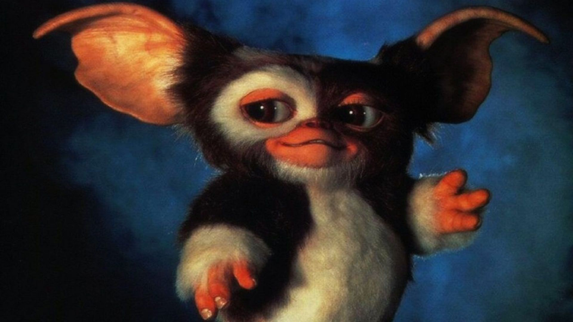 Res: 1920x1080, 6 Gremlins 2: The New Batch HD Wallpapers | Background Images - Wallpaper  Abyss
