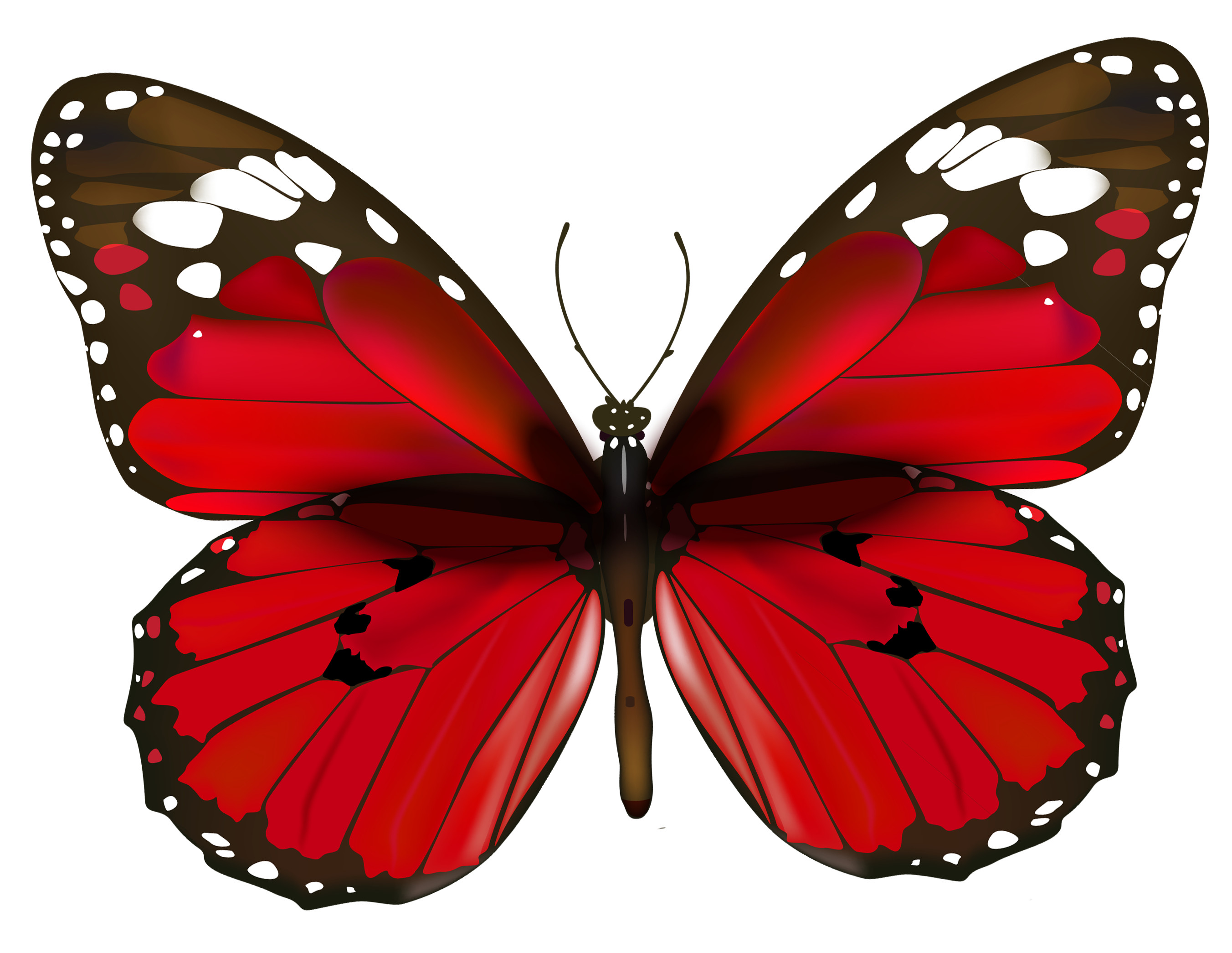 Res: 2704x2090, Free Red Butterfly Cliparts, Download Free Clip Art, Free Clip Art on  Clipart Library