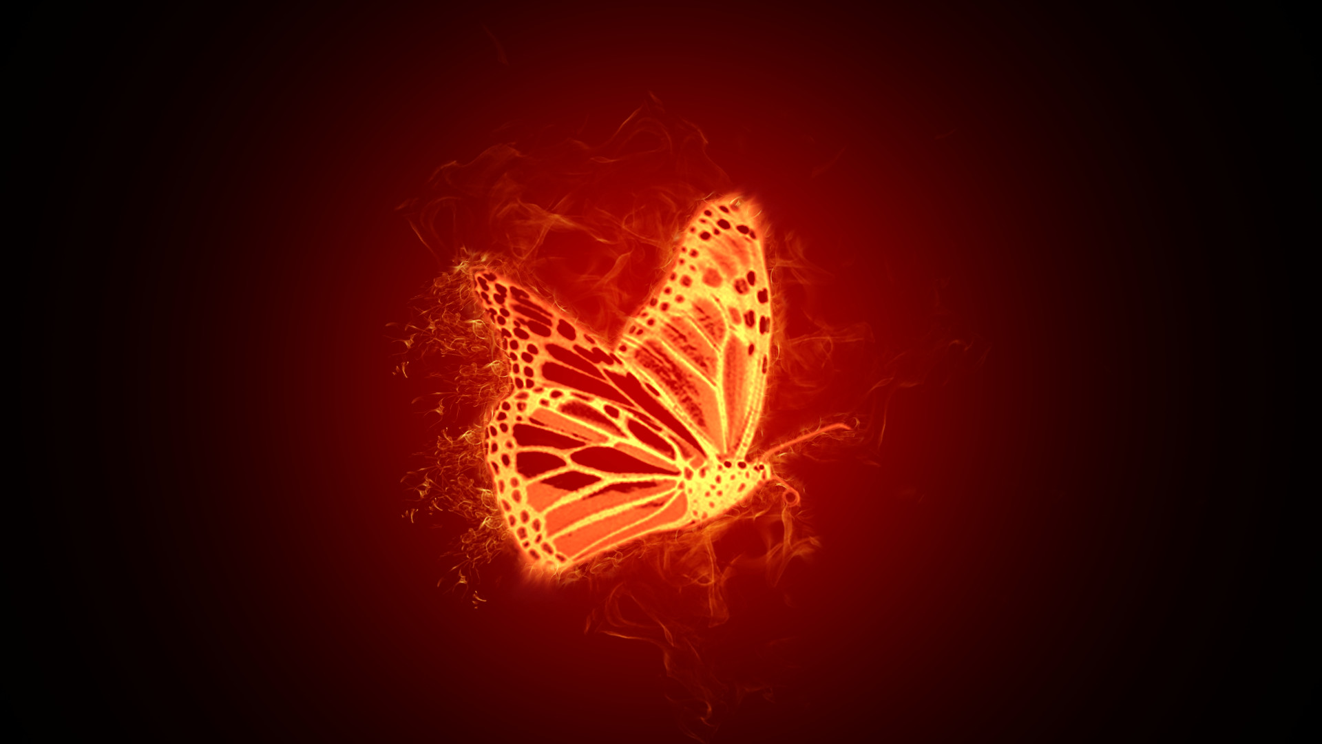 Res: 1920x1080, butterfly wallpaper fire