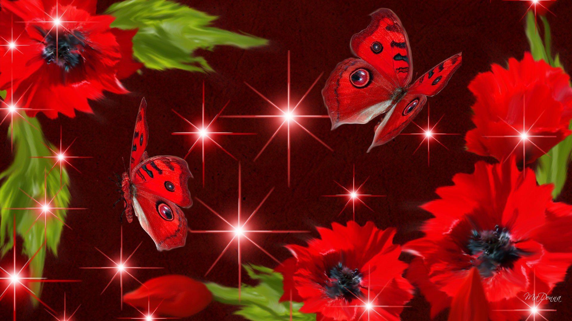Res: 1920x1080, 3d stars red poppies butterflies sparkles summer flower