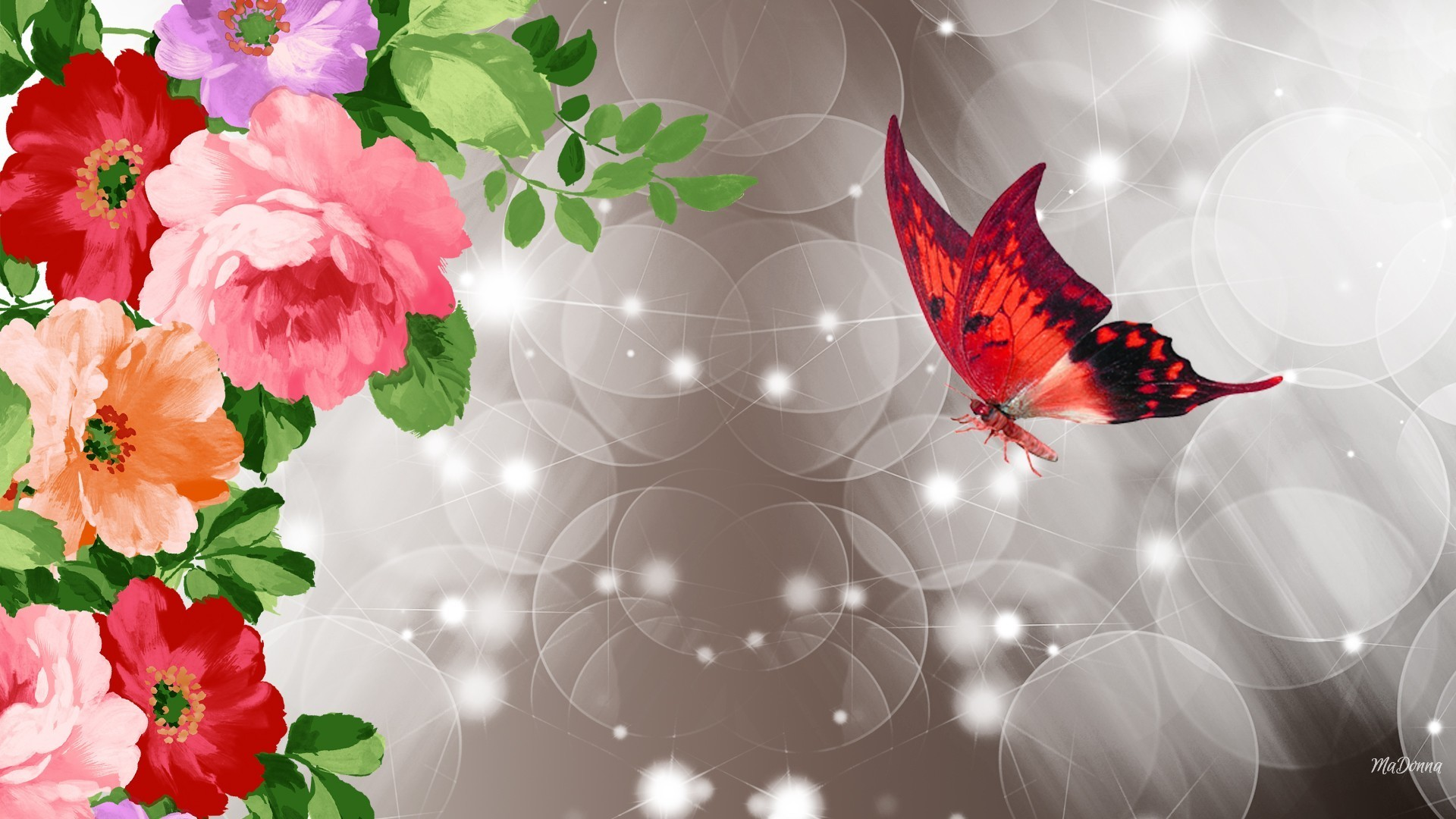 Res: 1920x1080, Wild Roses Red Butterfly Flowers Blooms Shine Summer Stars Spring Blossoms  Sparkle Best Wallpapers