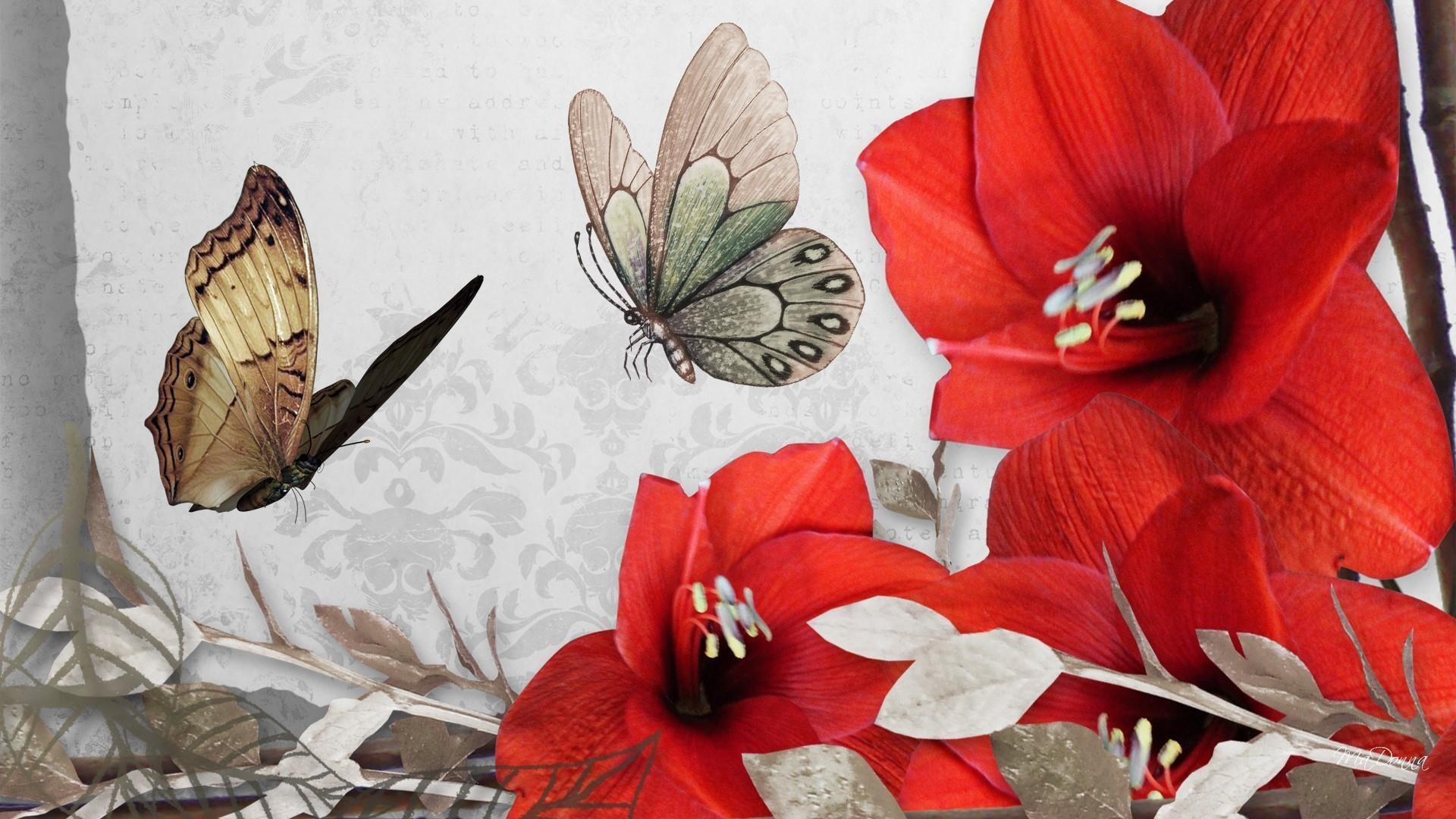 Res: 1920x1080, Red Butterfly Wallpaper 68+ - Page 3 of 3 - yese69.com - 4K Hintergründe  Welt