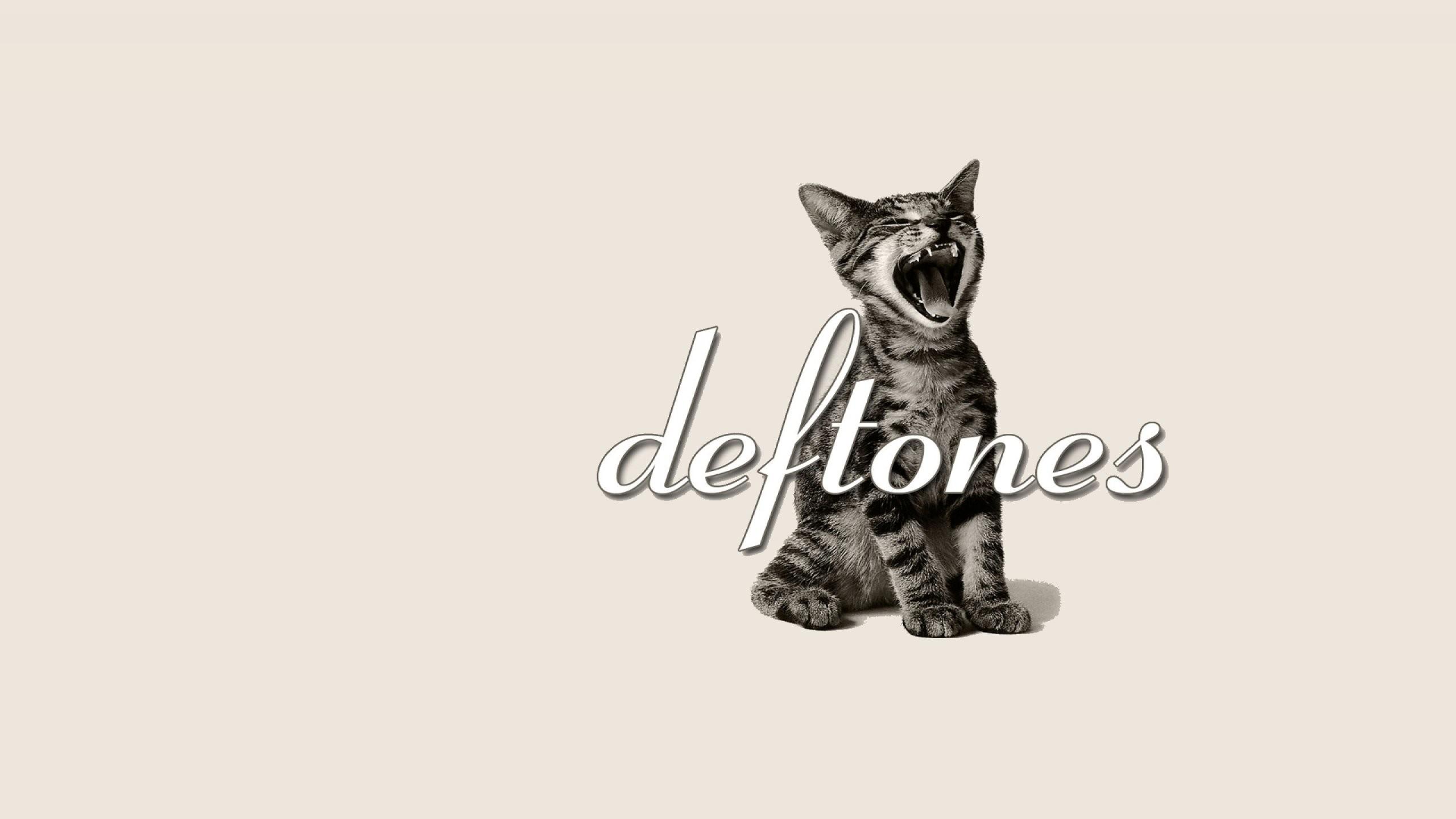 Res: 2560x1440, DEFTONES alternative metal experimental rock nu-metal heavy hard cat kitten  wallpaper      549677   WallpaperUP