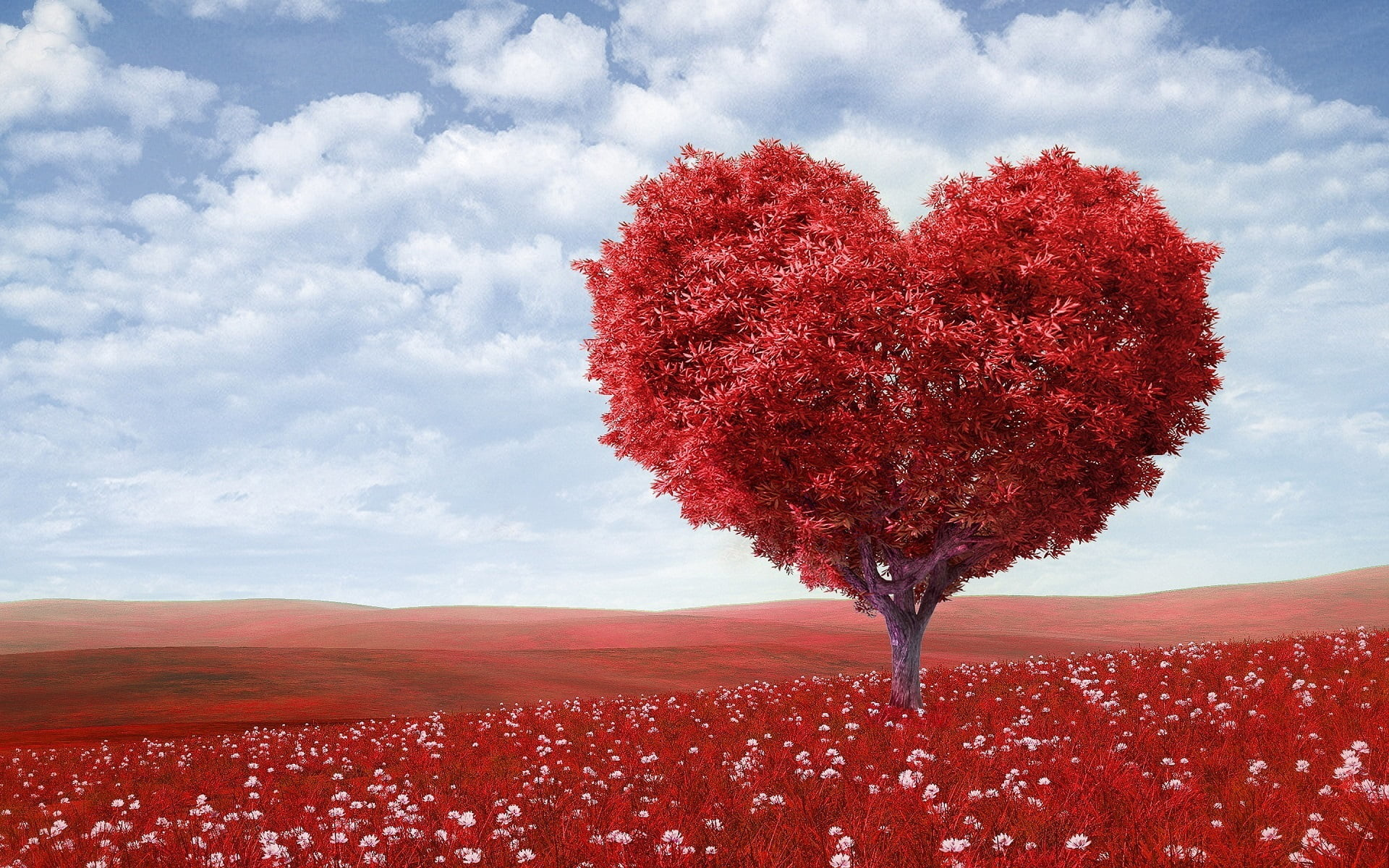 Res: 1920x1200, red heart tree with fields HD wallpaper