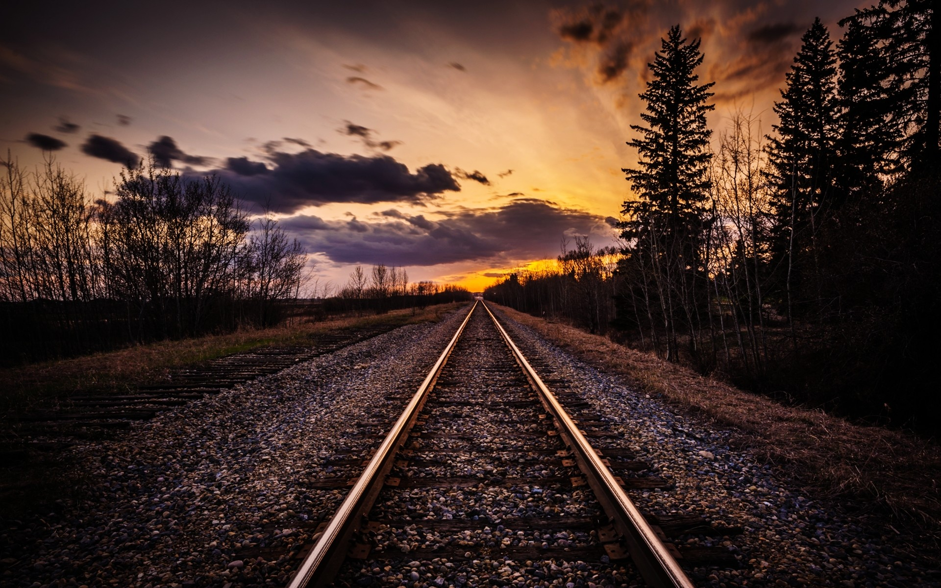 Res: 1920x1200, Image: Rail Road Dark Trees Sunset wallpapers and stock photos. Â«