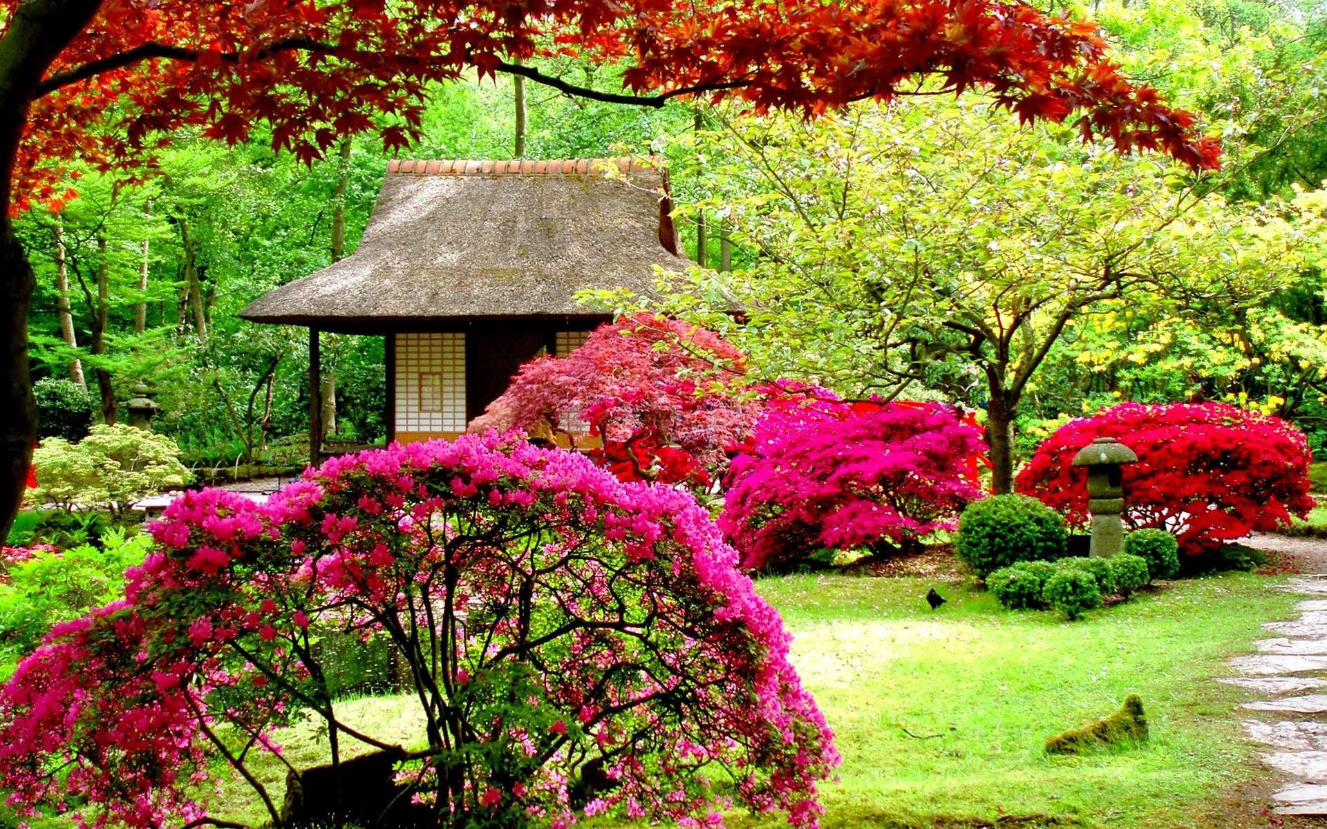 Res: 1920x1200, Flower Garden Wallpapers - Full HD wallpaper search